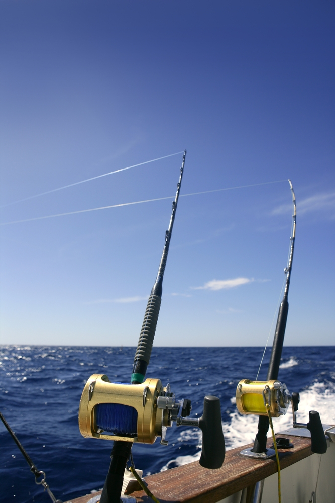 fishing rods pic.jpg