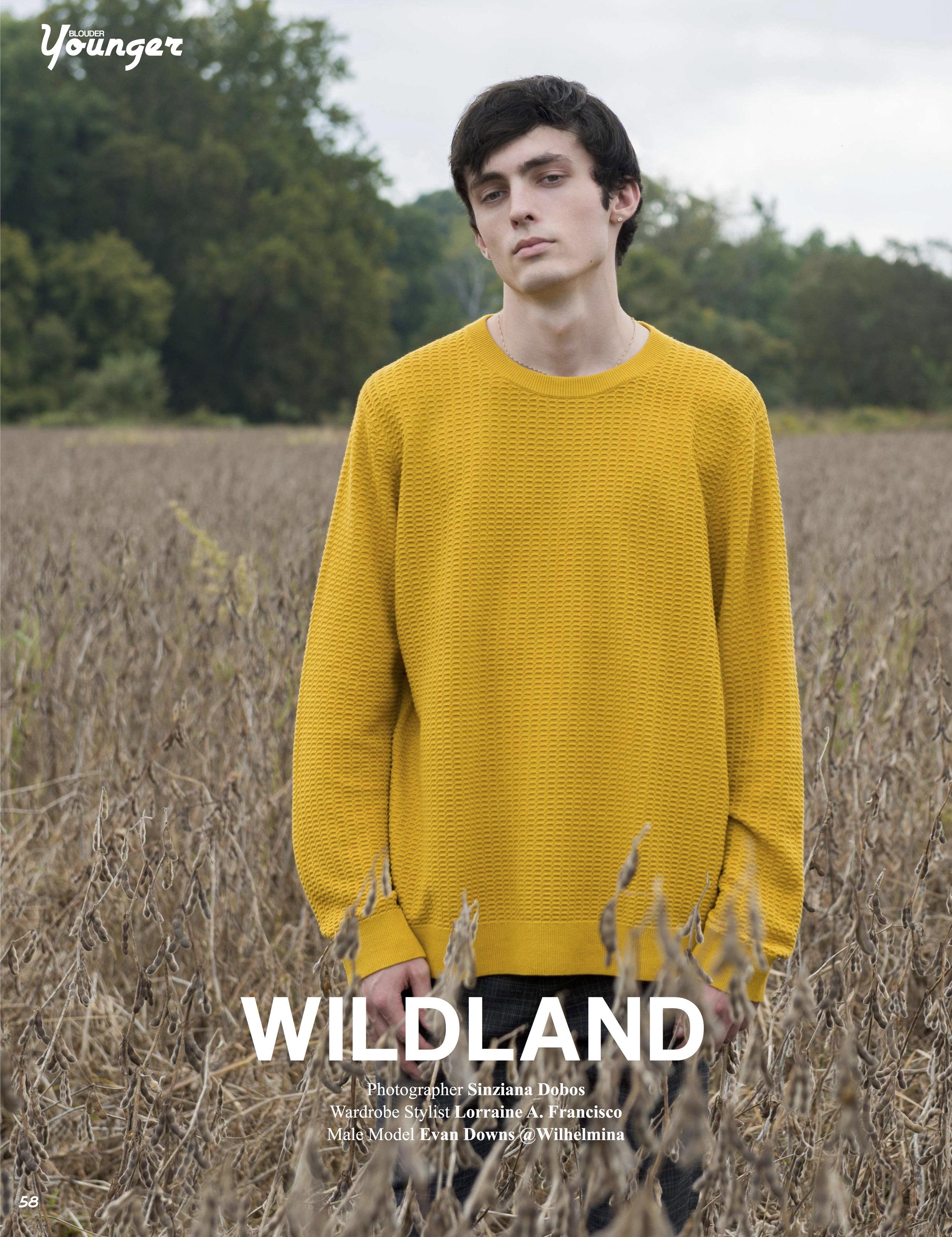 WILDLAND.jpg