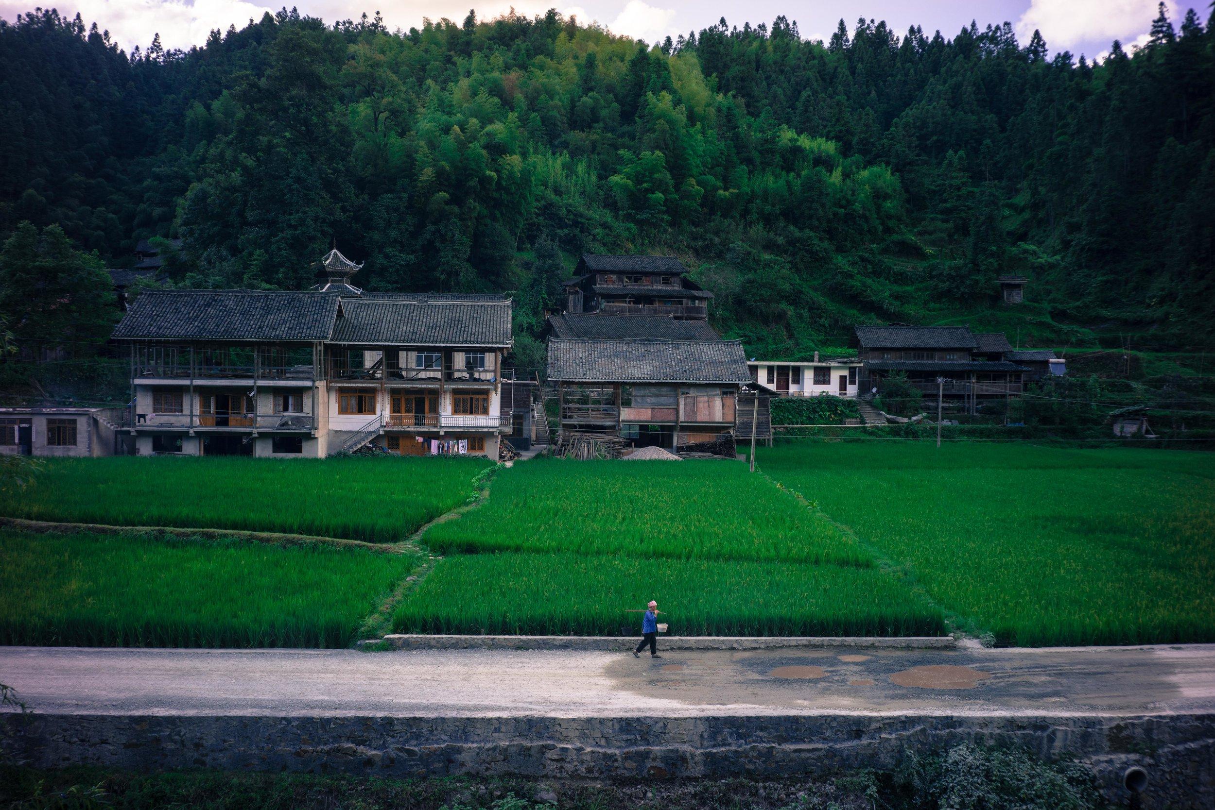 W_Beijing-05412.jpg