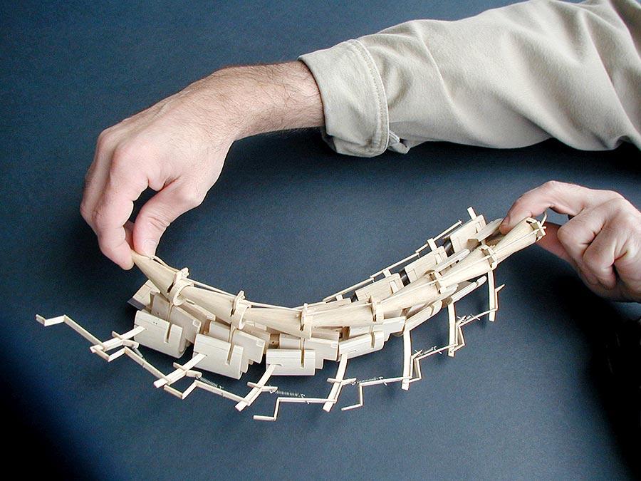 Spine series