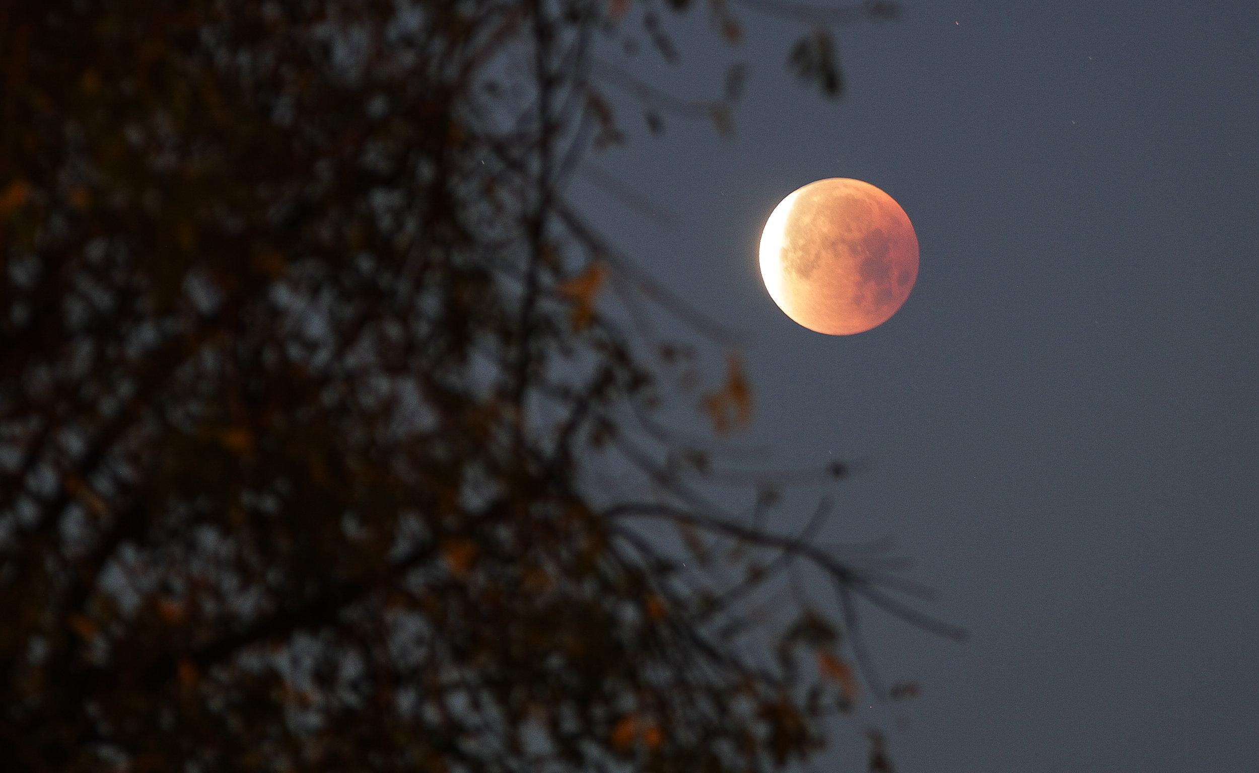 MRobleto SBB Moon 1.jpg