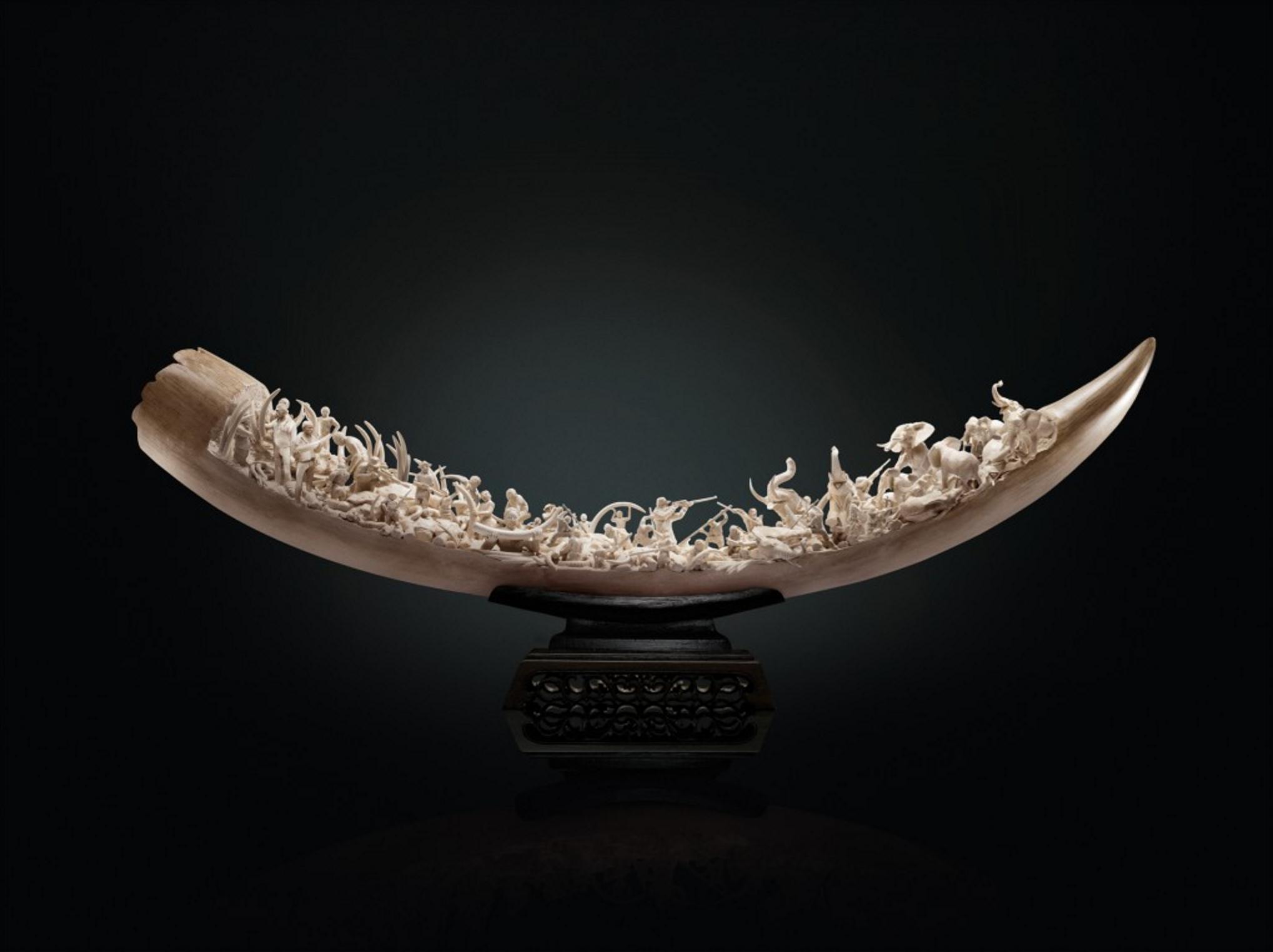 WWF (World Wildlife Fund) – Ivory