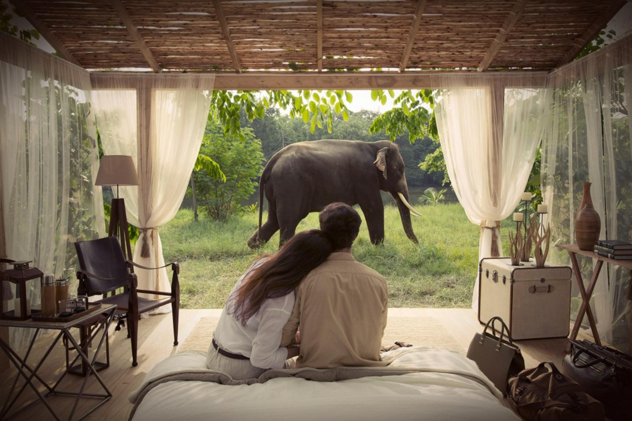 086 VISA_Thailand Elephant.png