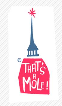 Turin_the Mole Antonelliana.png