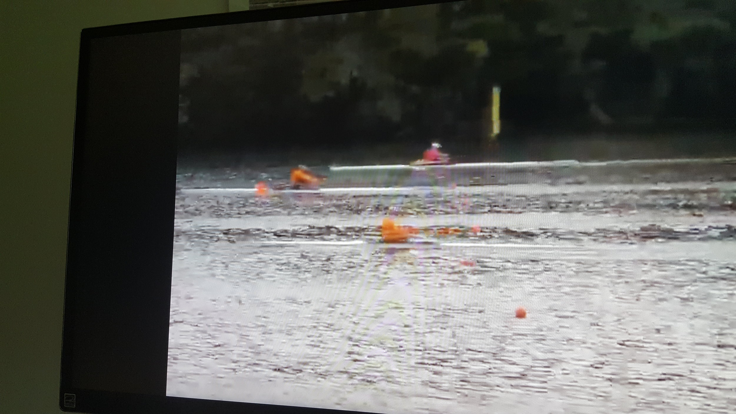 Silver and Bronze in the Men's E 1x