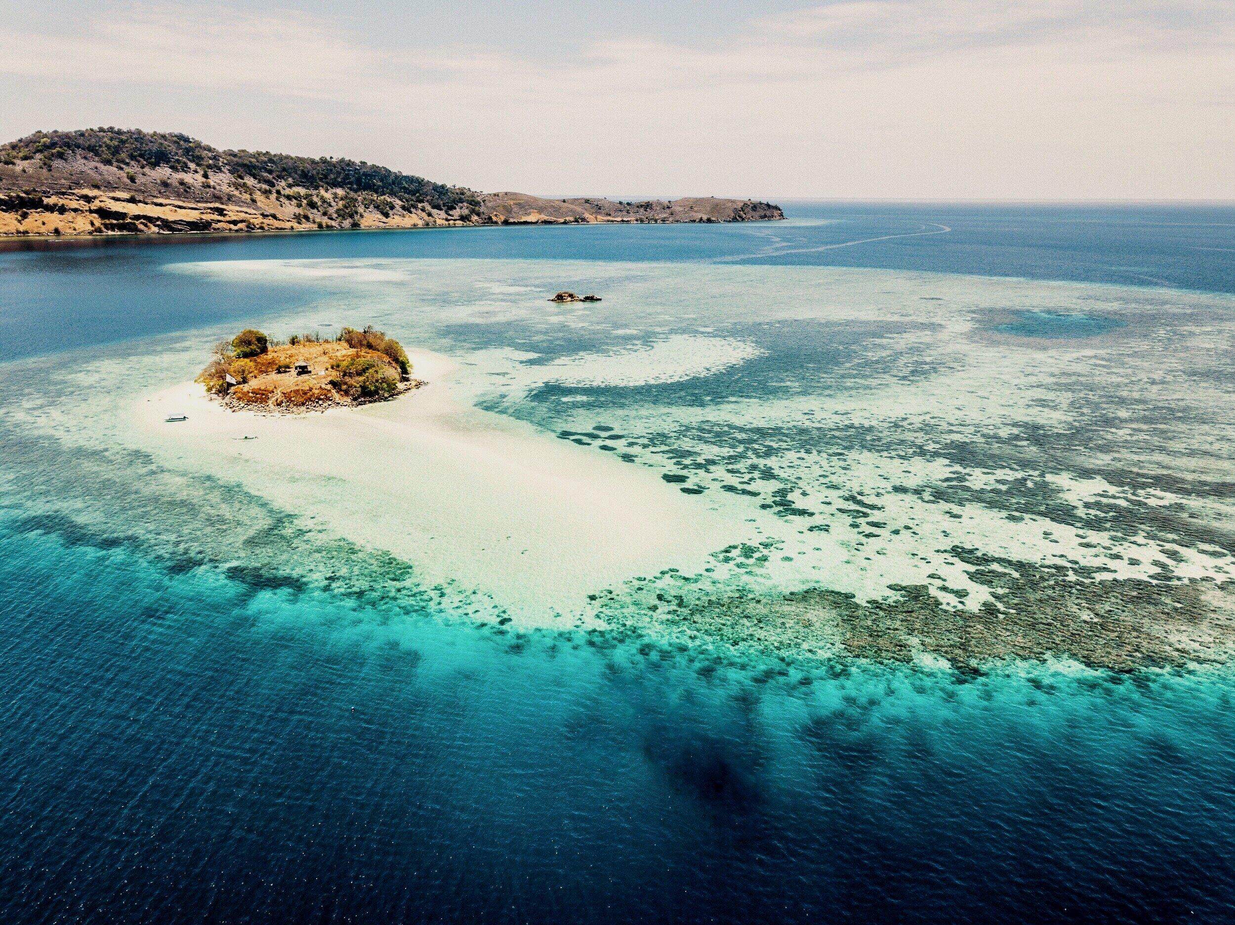 Coral+Reef+-+saam+.jpg