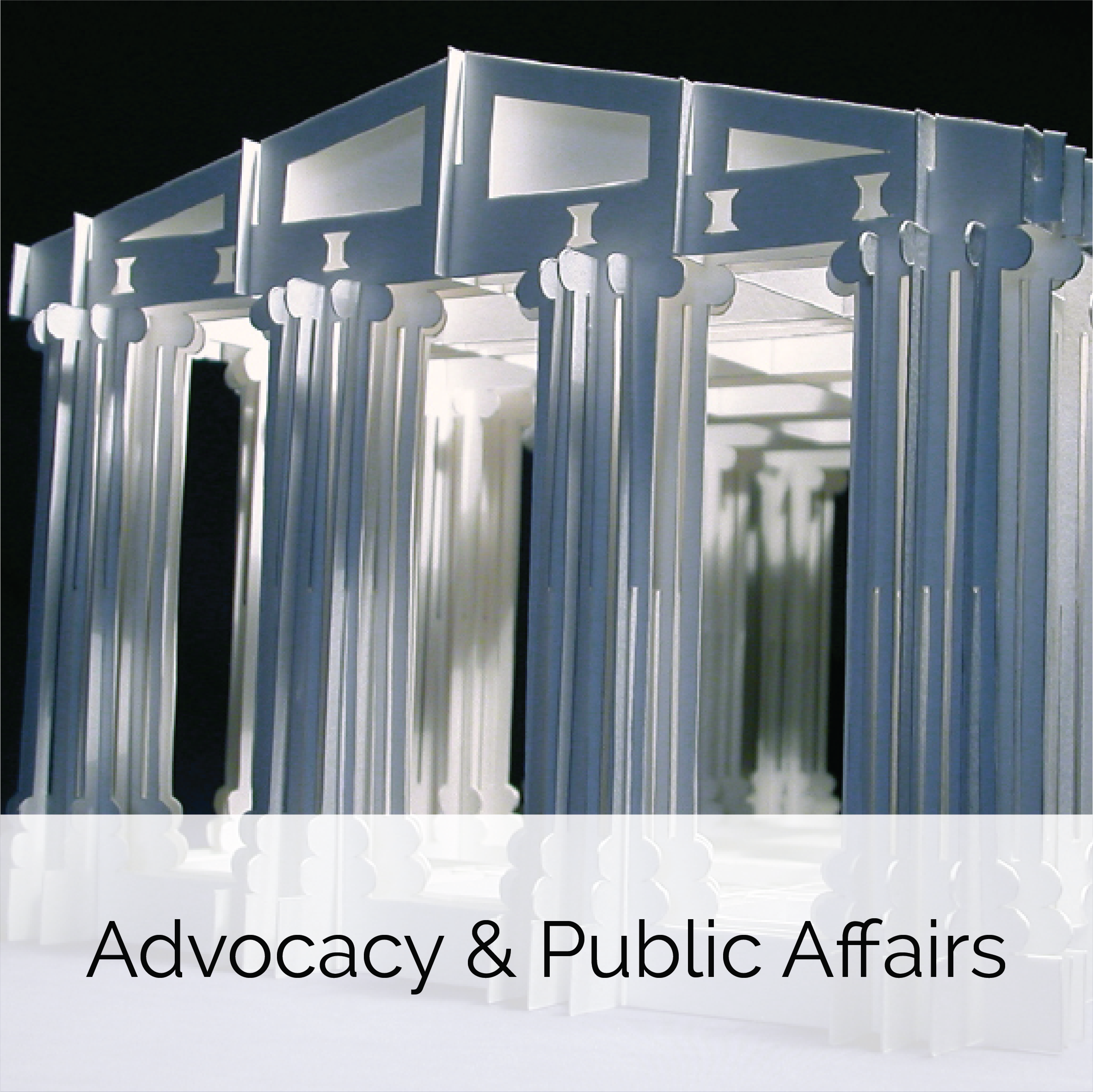 Advocacy and Public Affairs.png