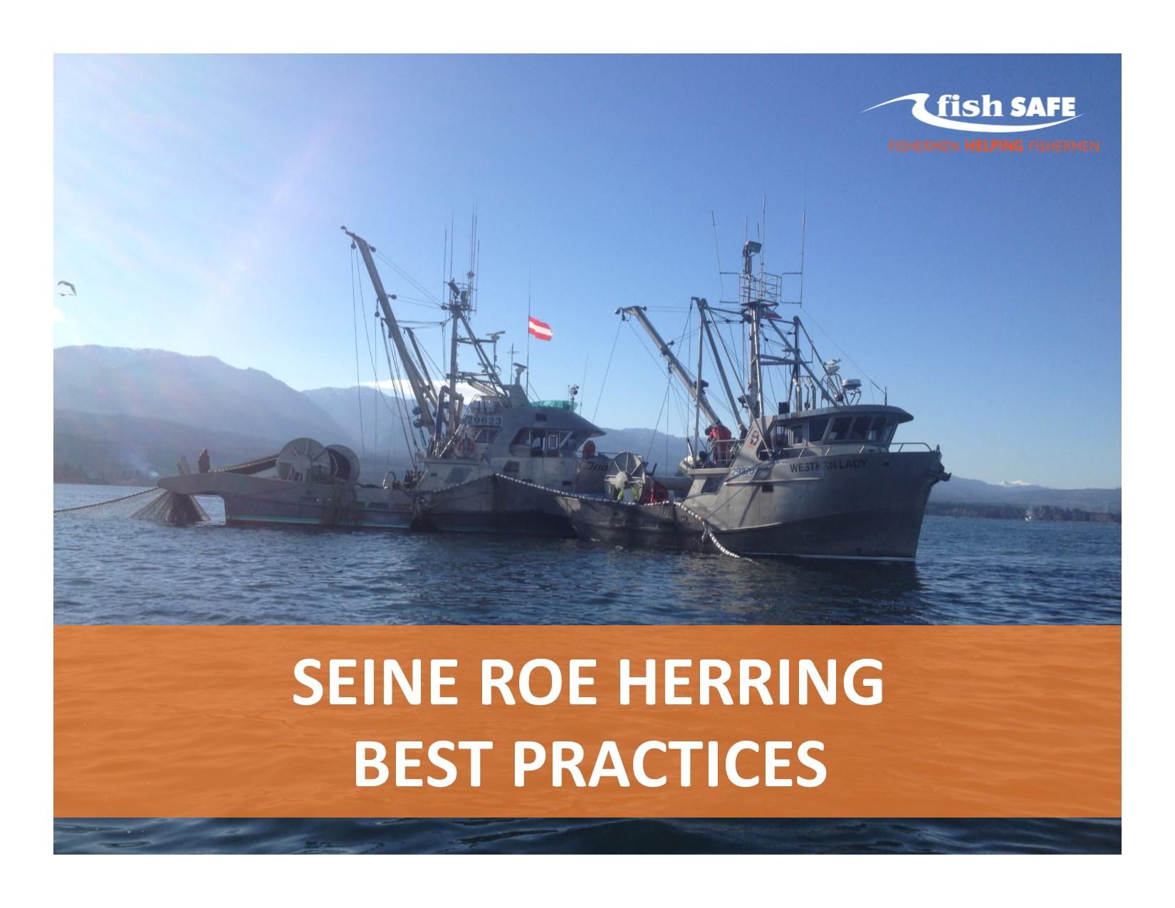 Best Practices - Seine Roe Herring (Cover).jpg