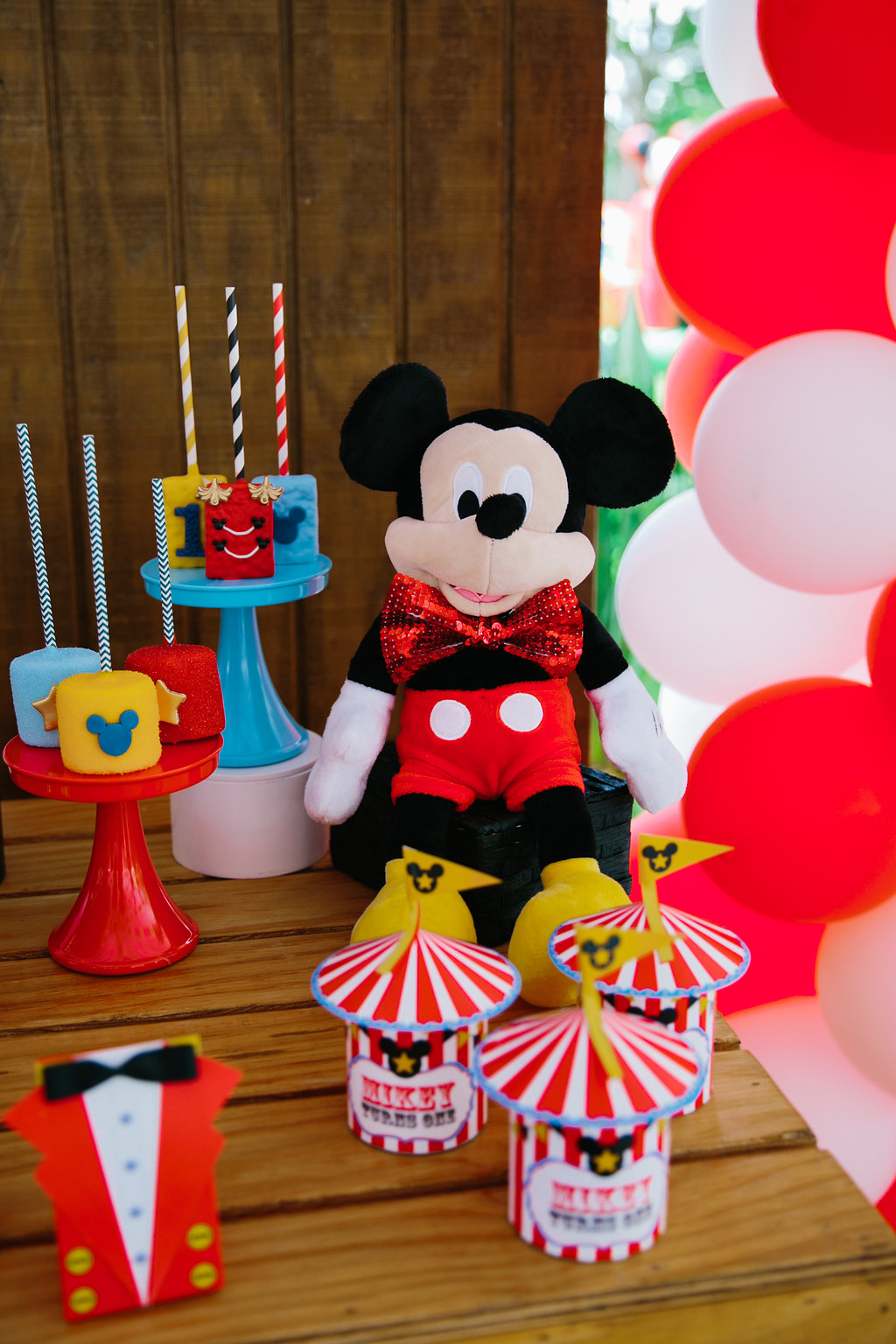 Mikey-1st-Bday-23.jpg