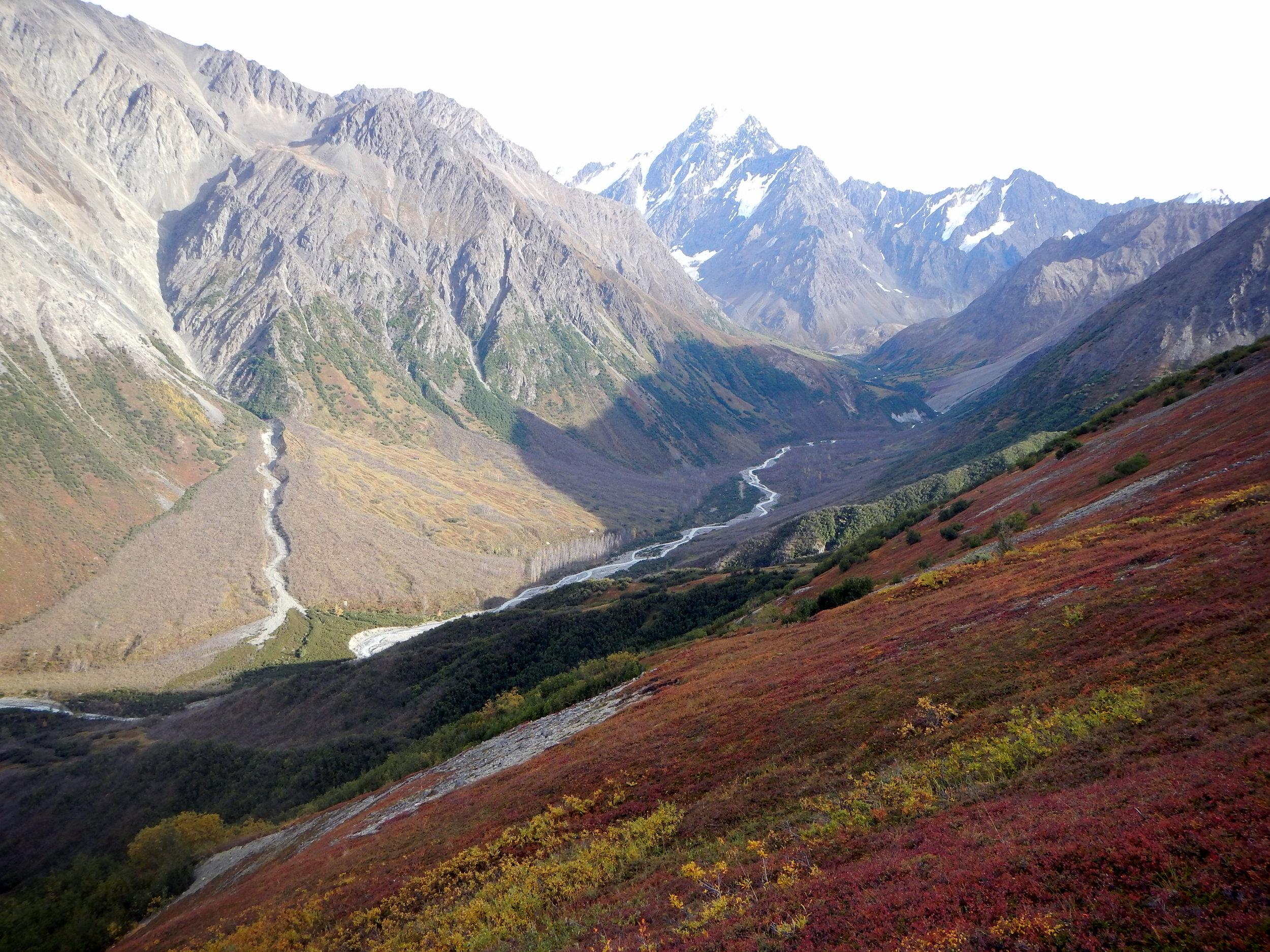 Beautiful Alaska sheep country.