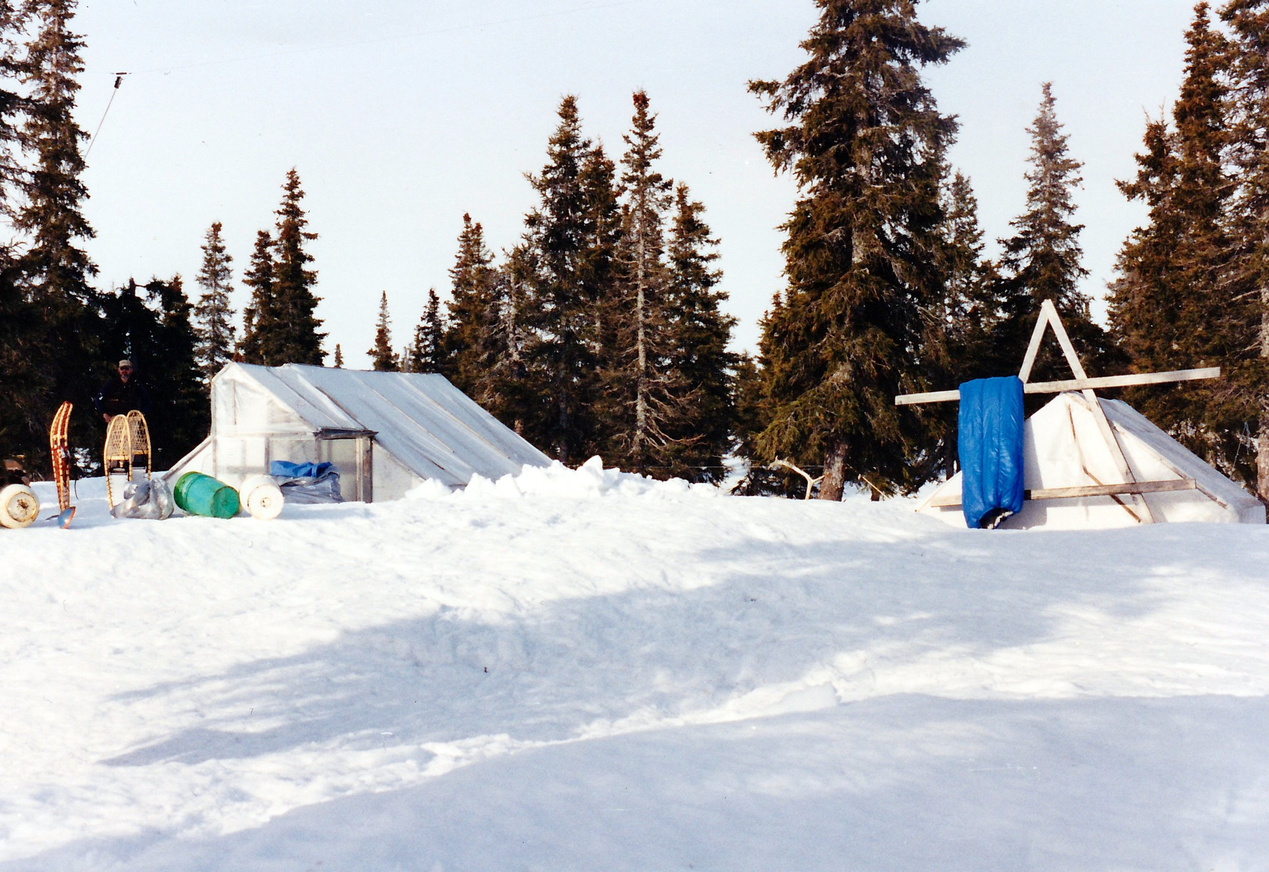 The camp during normal operations. Dan behind the snowshoes probably dragging dead fire wood in for the fall. That was another job we did during rest periods.