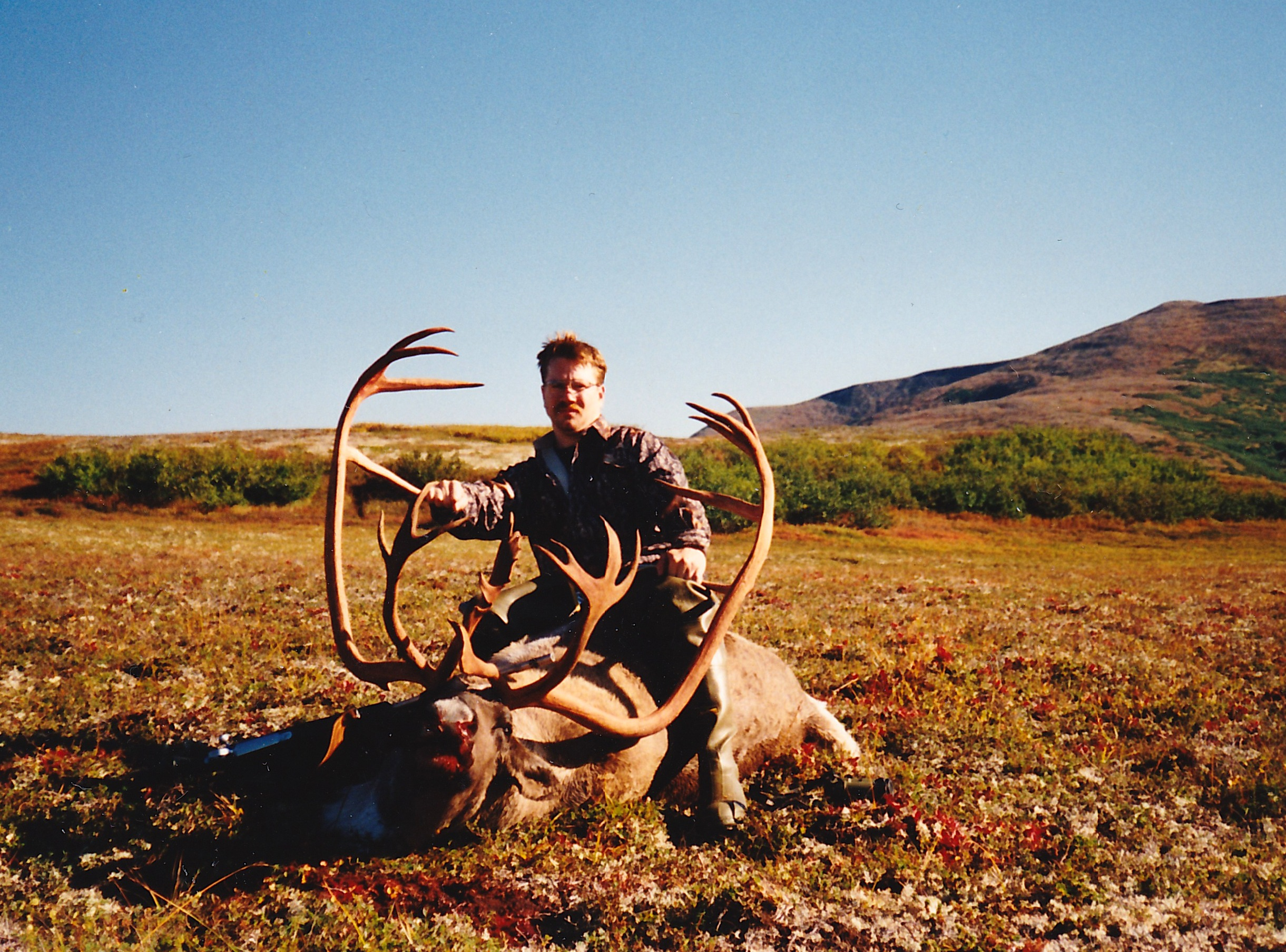 Dave Nelsen's second B&C caribou scoring 402 B&C. Dave's guide was Mark Confer.