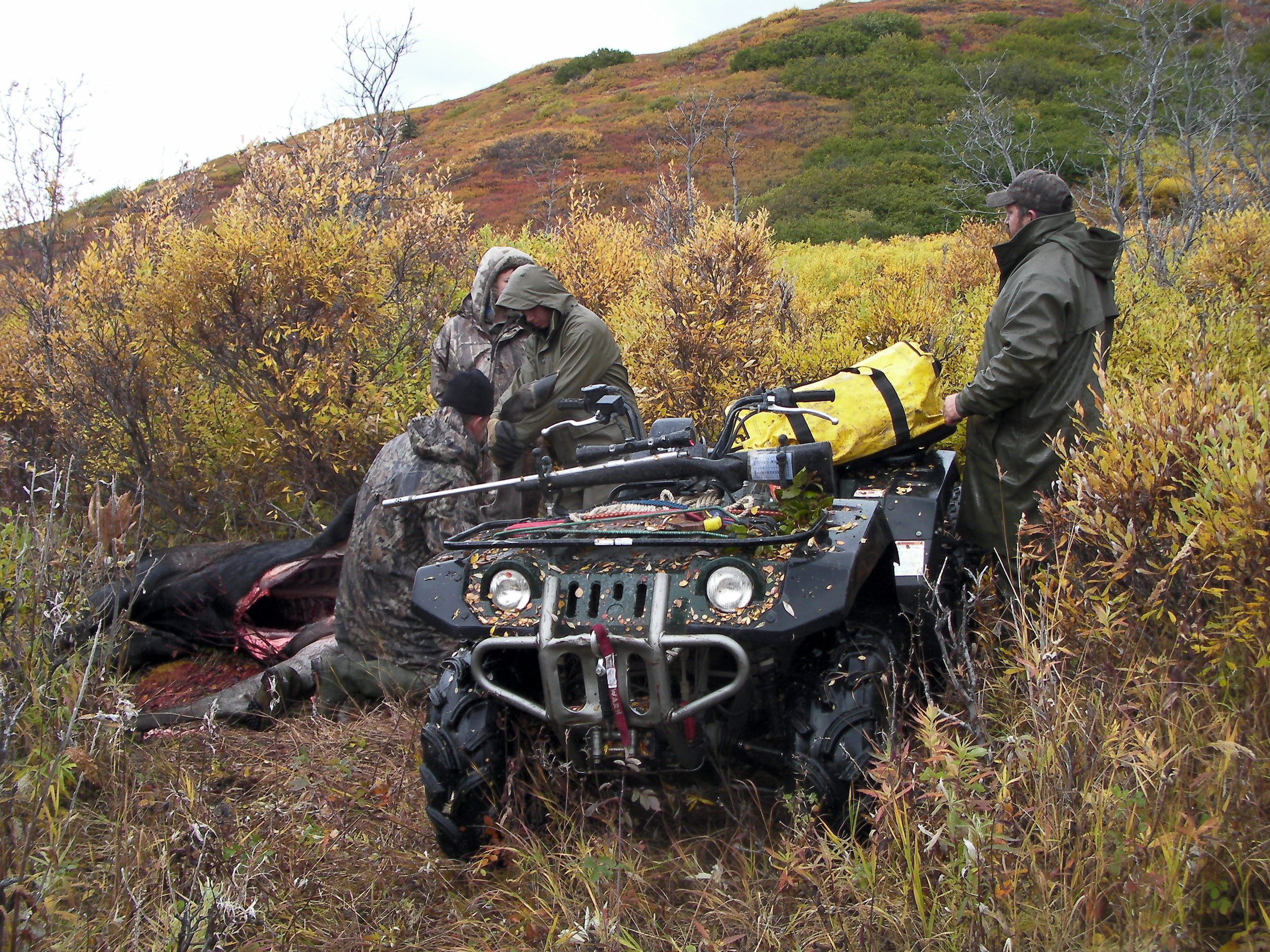 """Thor standing by his """"Yamaha Grizzly"""" after plowing over the willows and proving me wrong."""
