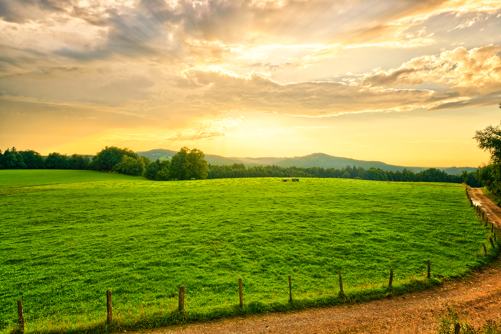"""""""Farming looks mighty easy when your plow is a pencil and you're a thousand miles from the field.""""   Dwight D. Eisenhower"""