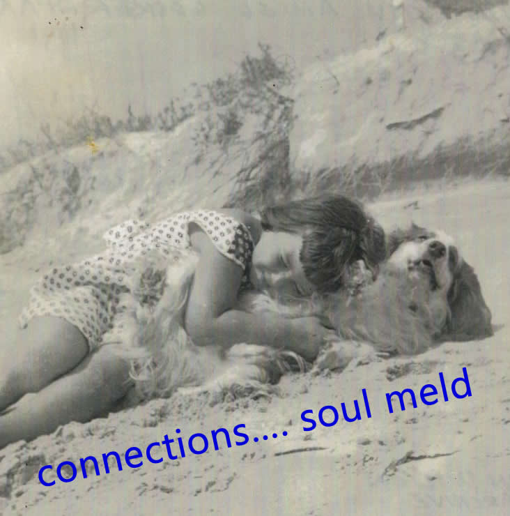 connections... soul meld