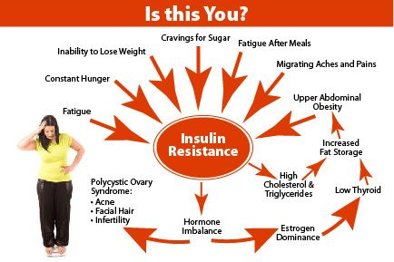 The cycle of insulin resistance.