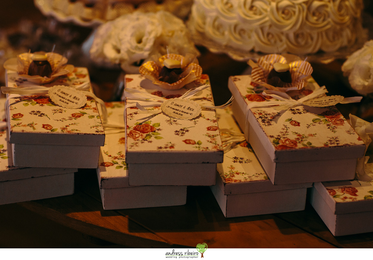 mini wedding em foz do iguacu - francielli e ricardo (306).jpg