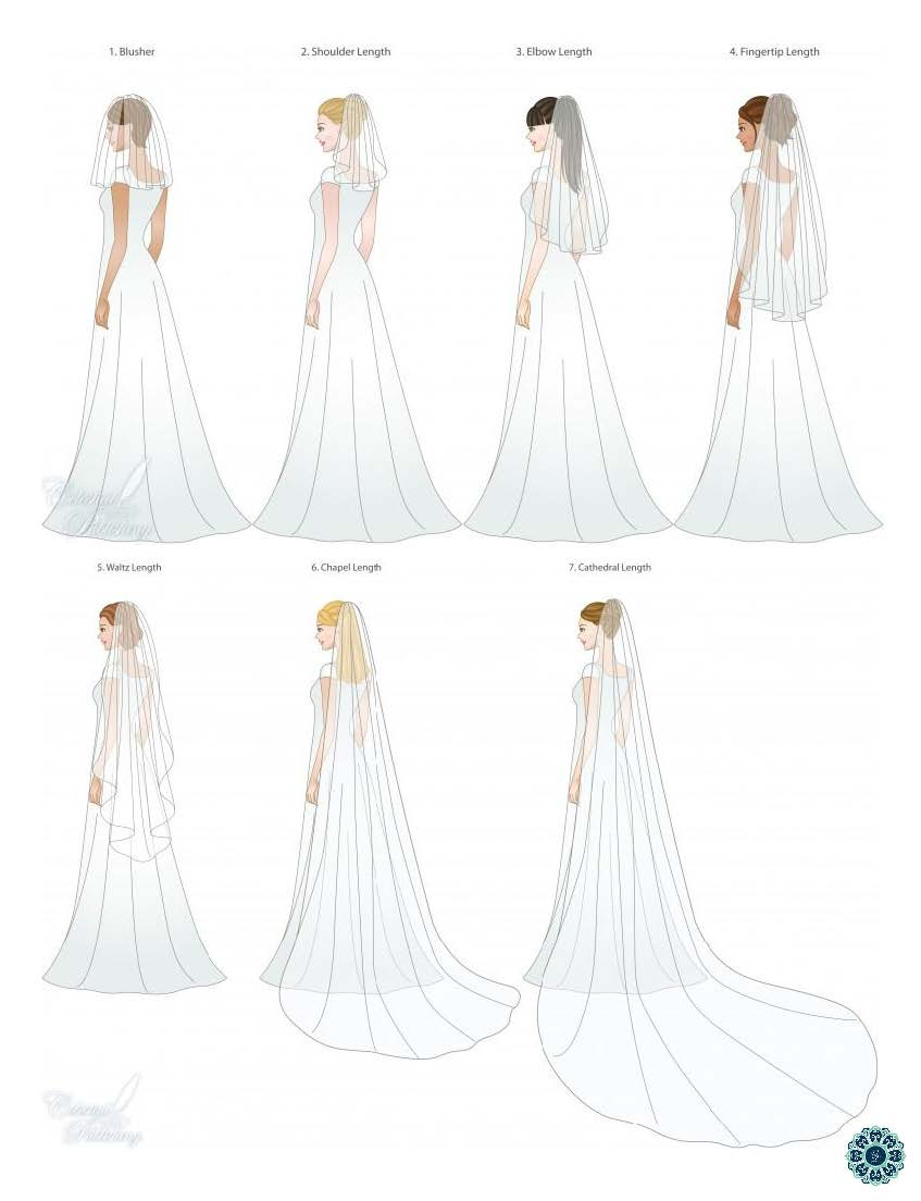 A quick chart of different veil types from  Geomyra weddings and events .