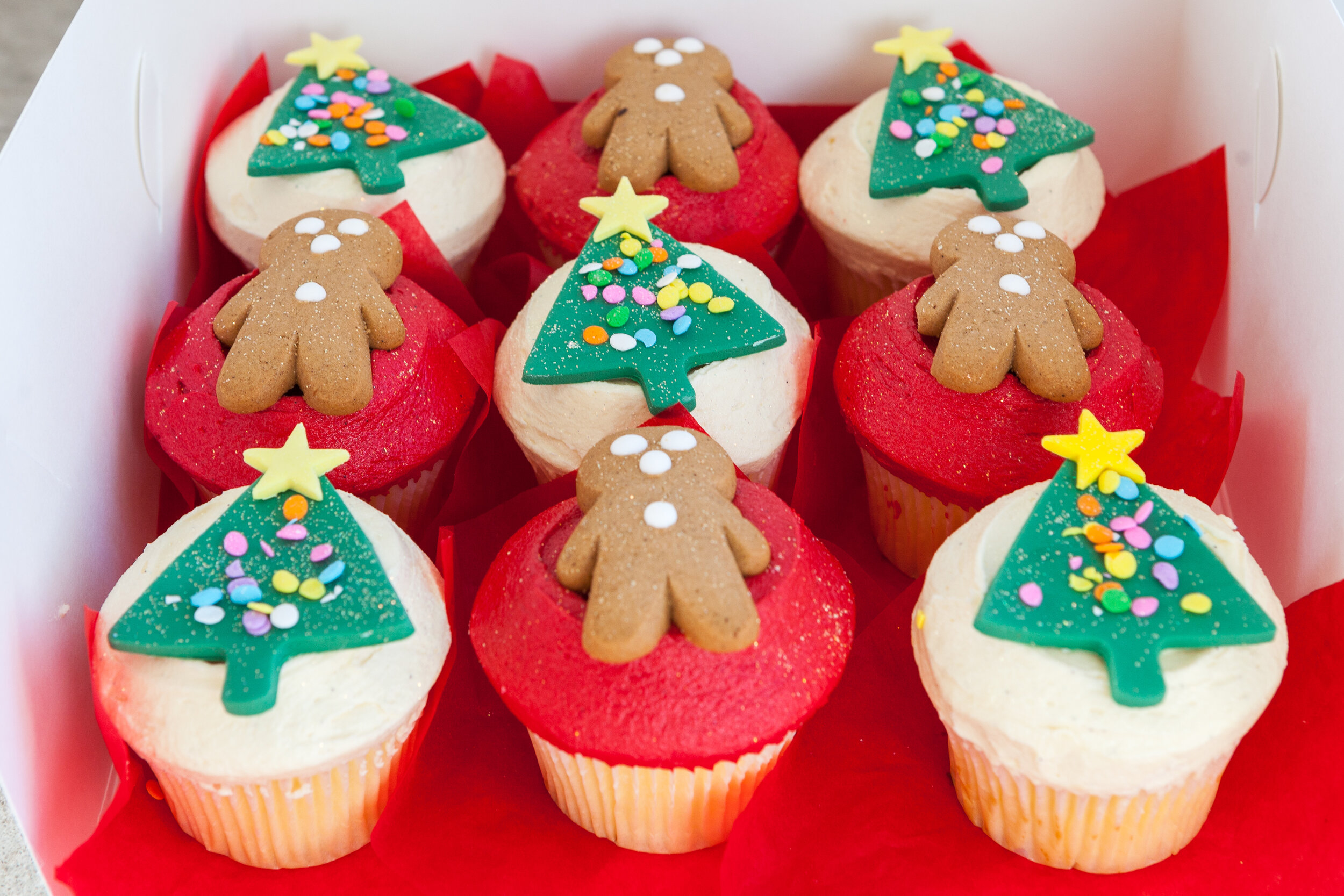 Vanillapodspecialtycakes_Christmas2019-71.jpg