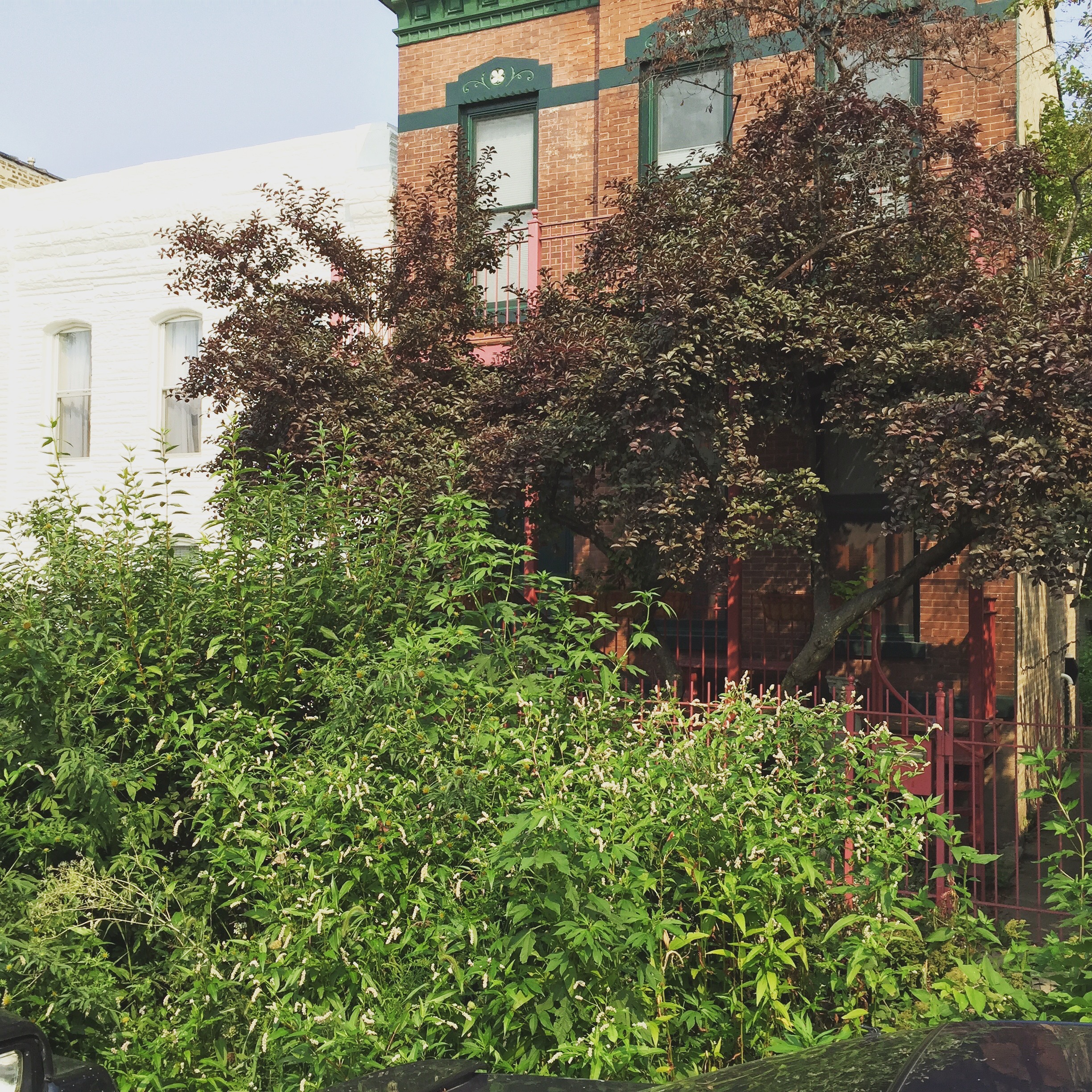 These Humboldt Park homeowners wanted to restore curb appeal of their beautiful residence...