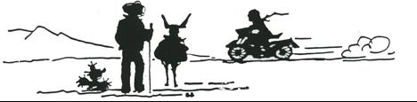 Black and White DV Logo.png