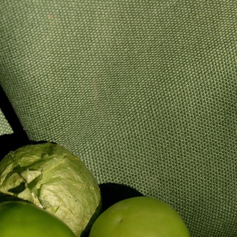 Winthrop Lettuce