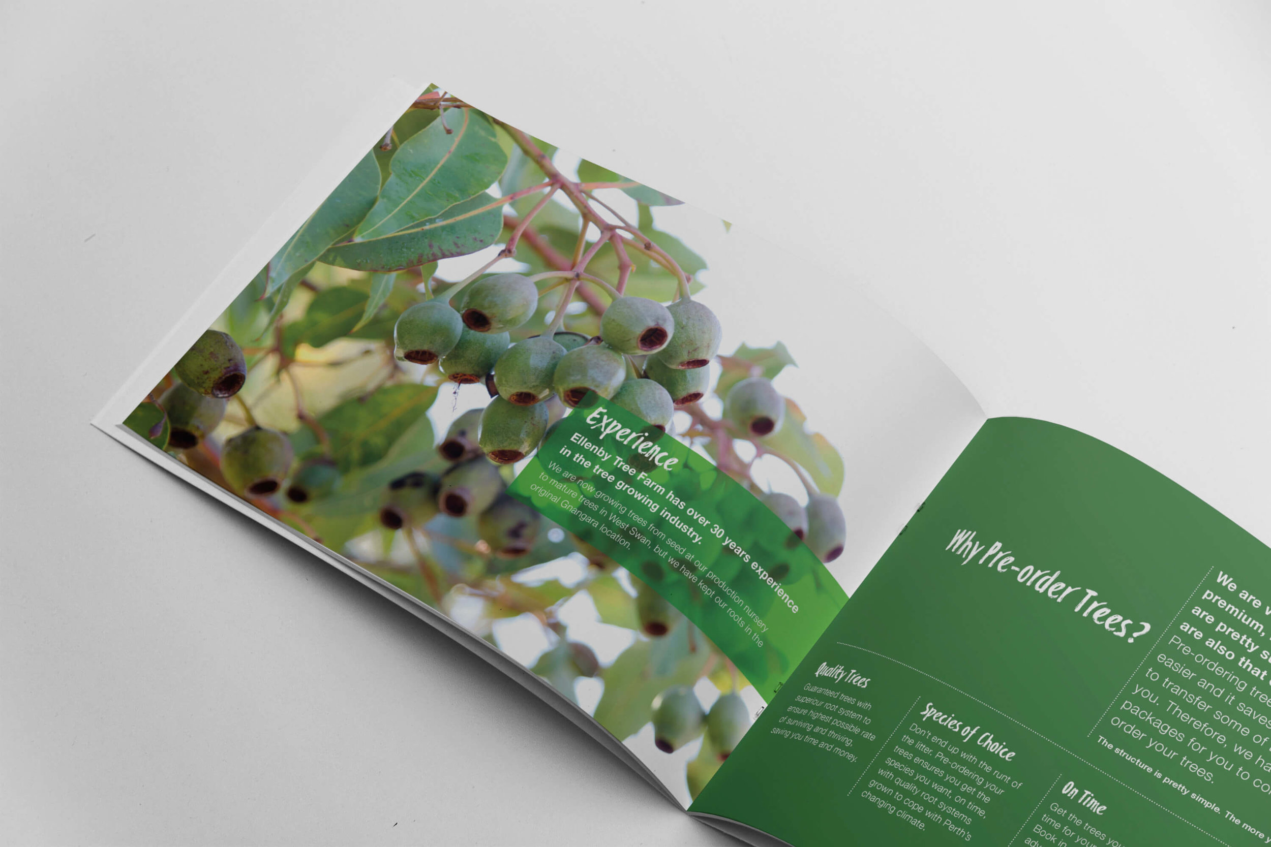 ellenby tree farm-brochure-graphic design-nomad creative-perth