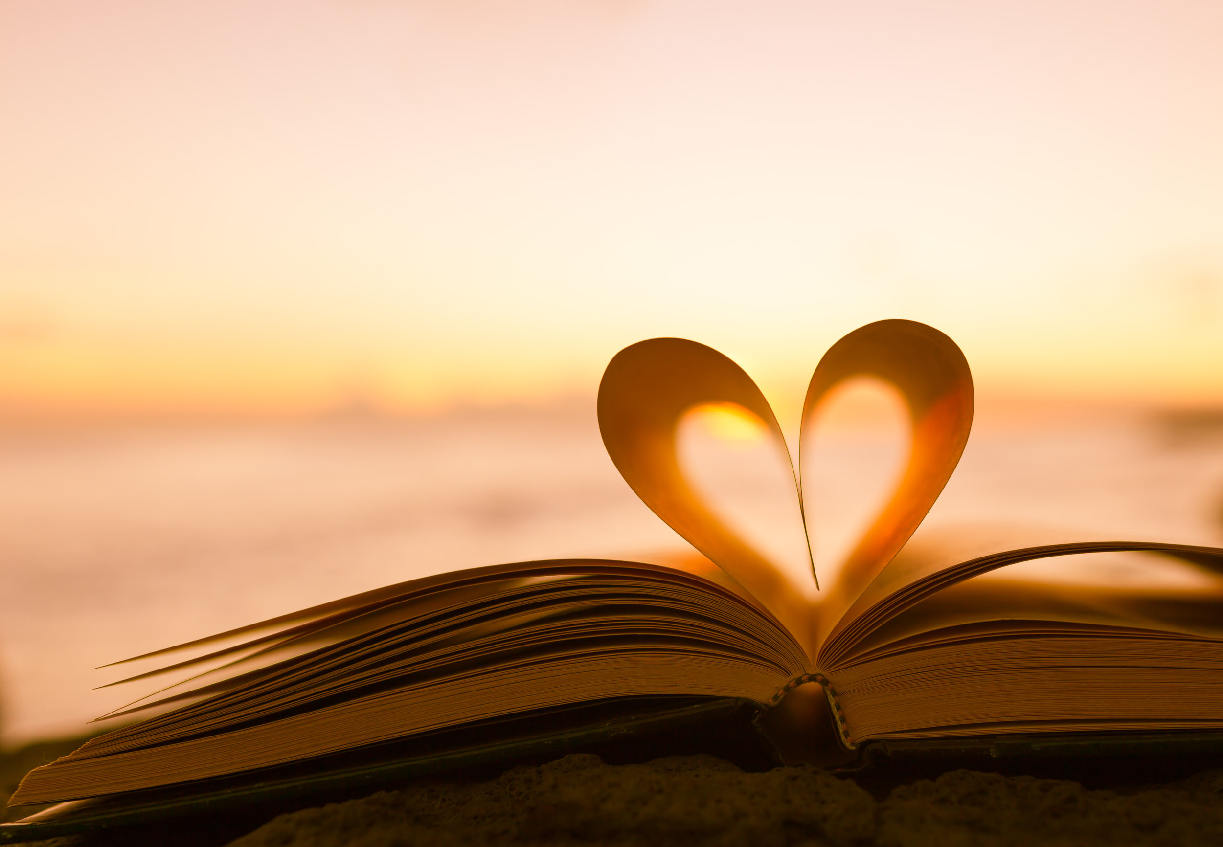 I love reading in summer or winter - Adobe stock Image # 99598608