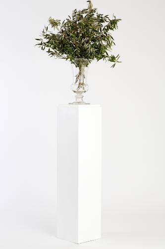 White Timber Plinths / Pedestal