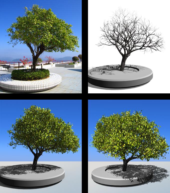 Image-based tree modeling