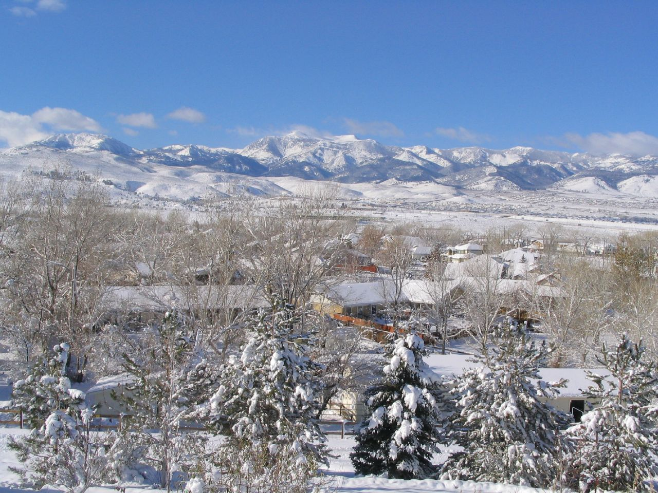 Snowy Day in Virginia Foothills, Reno, Nevada