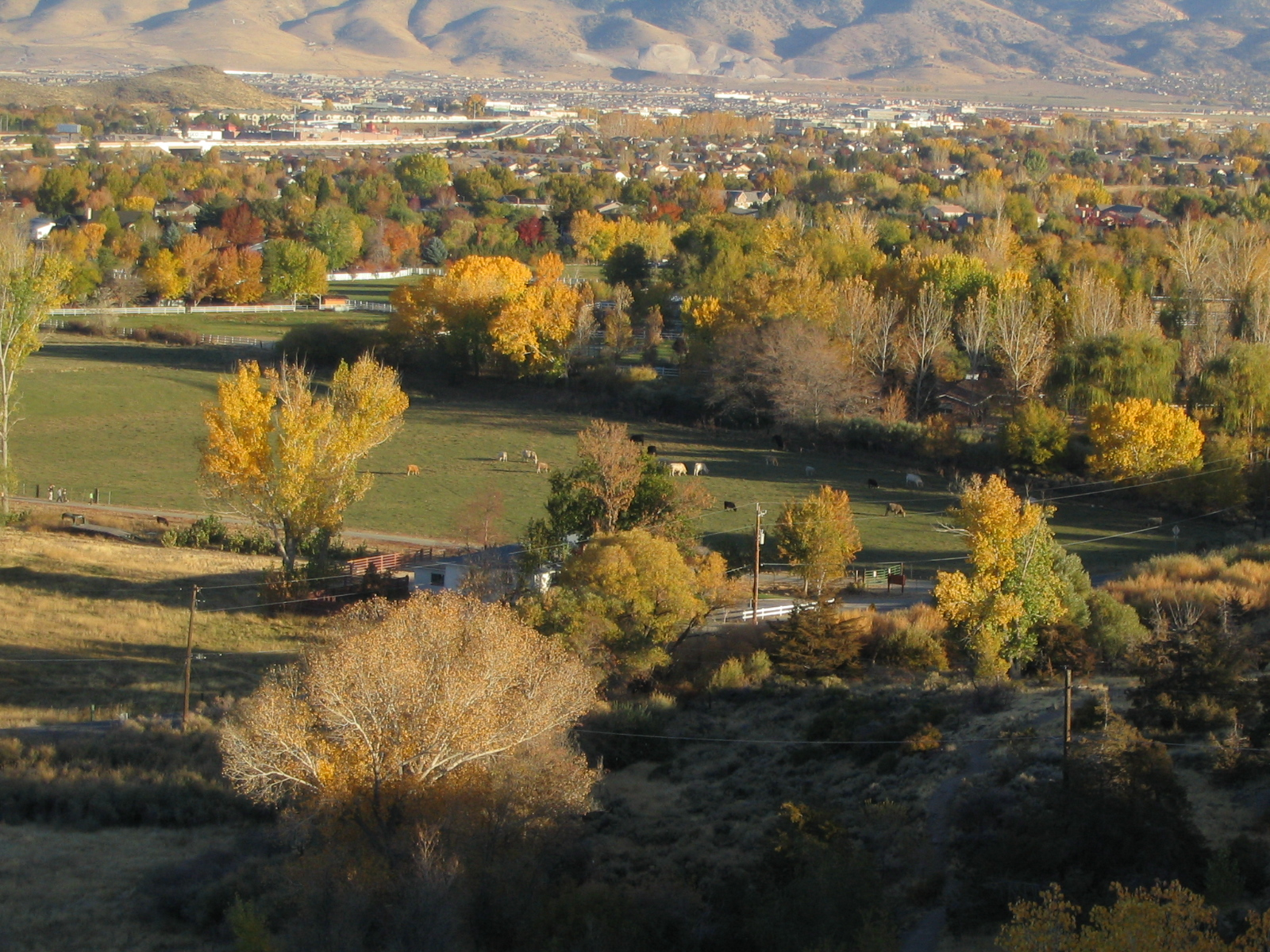South Reno from Windy Hill, Lakeside Drive, Reno, Nevada