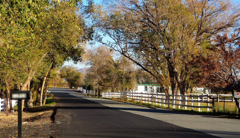 Valley Springs_opt.jpg