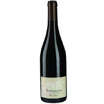 Burgundy - Les Vignes de Saint-Germain.jpg