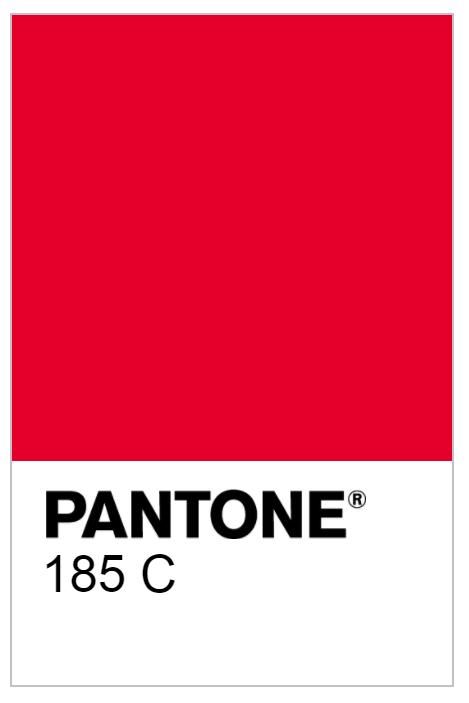 colour for personal brand design