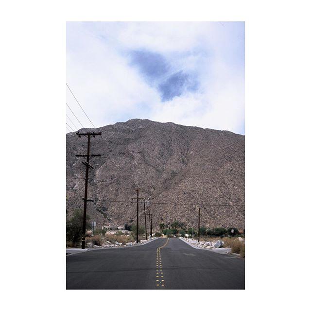 Palm Springs CA #portra160