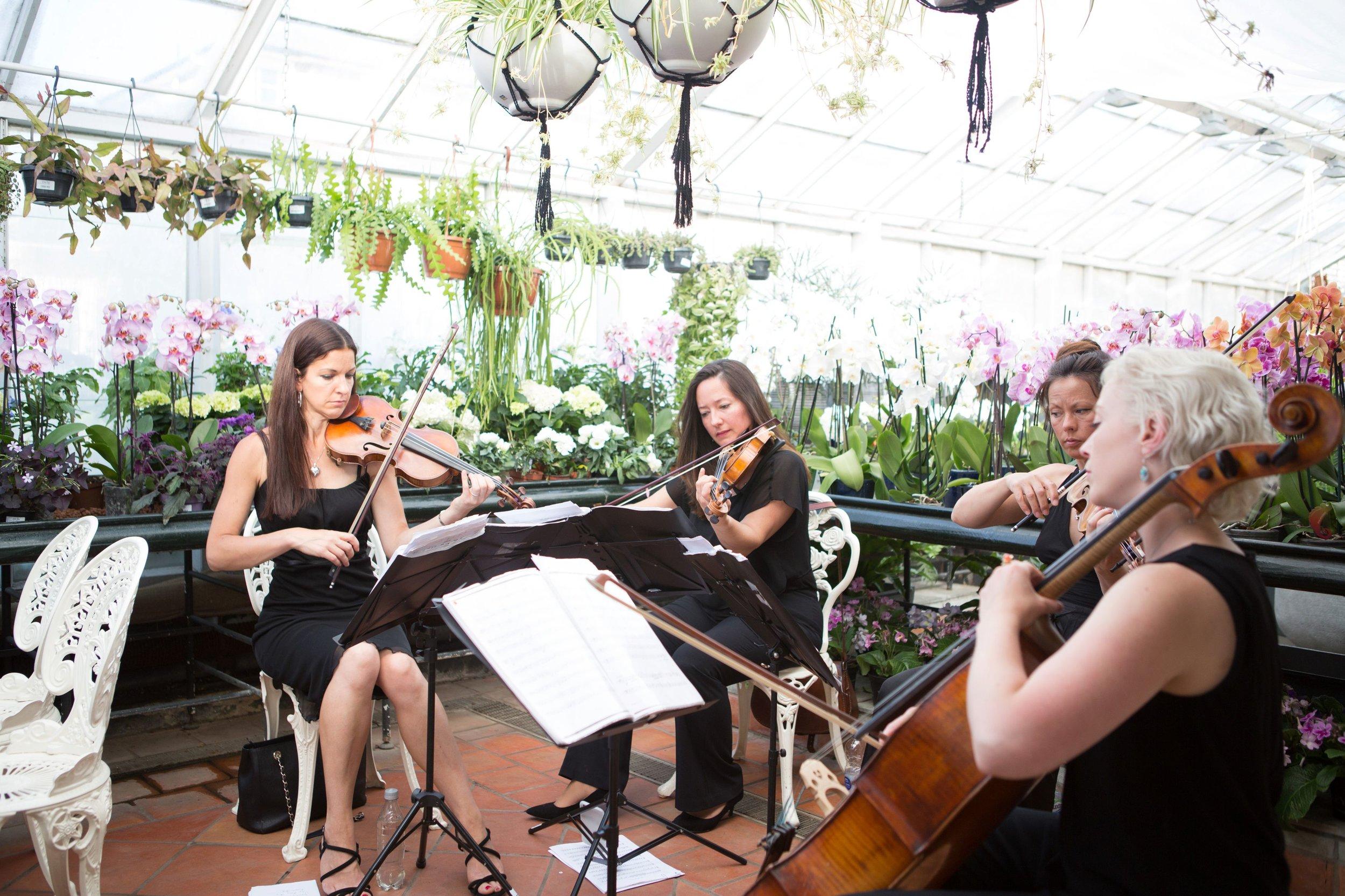 Hulya and Ben's Clifton Nurseries Wedding0038.jpg