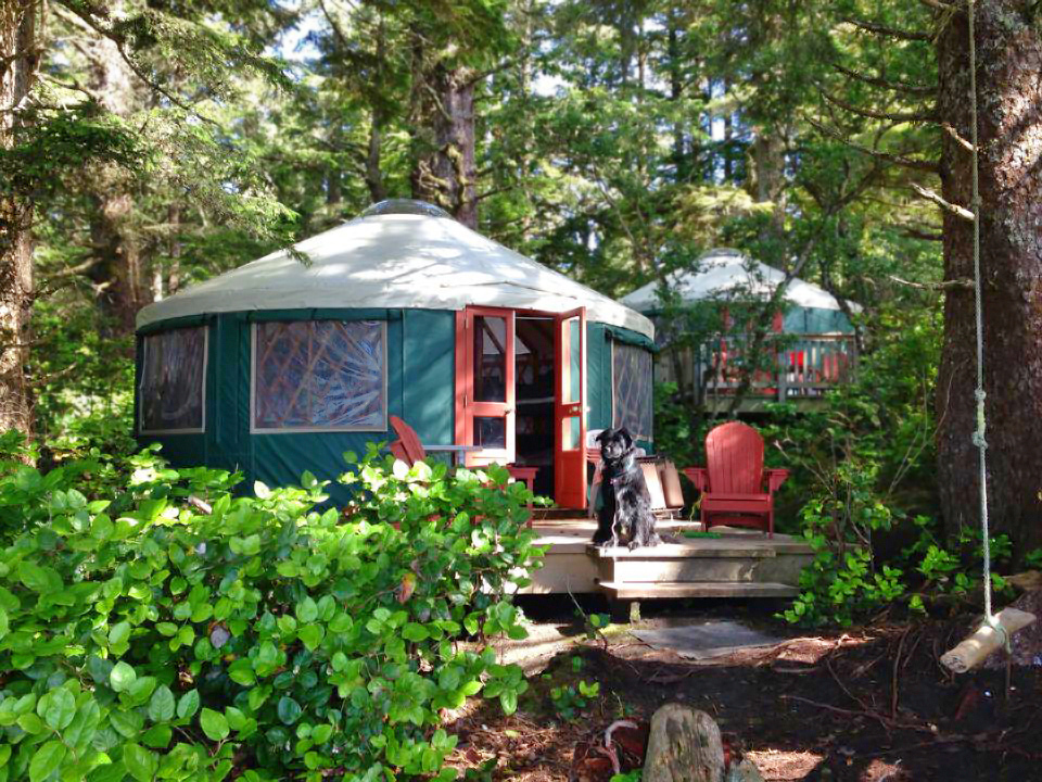 Pacific-Yurts-Campground-with-Dog.jpg