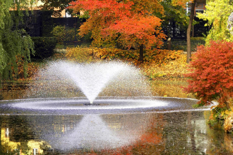 fotolia_4867993_xl_snb_autumnw.jpg