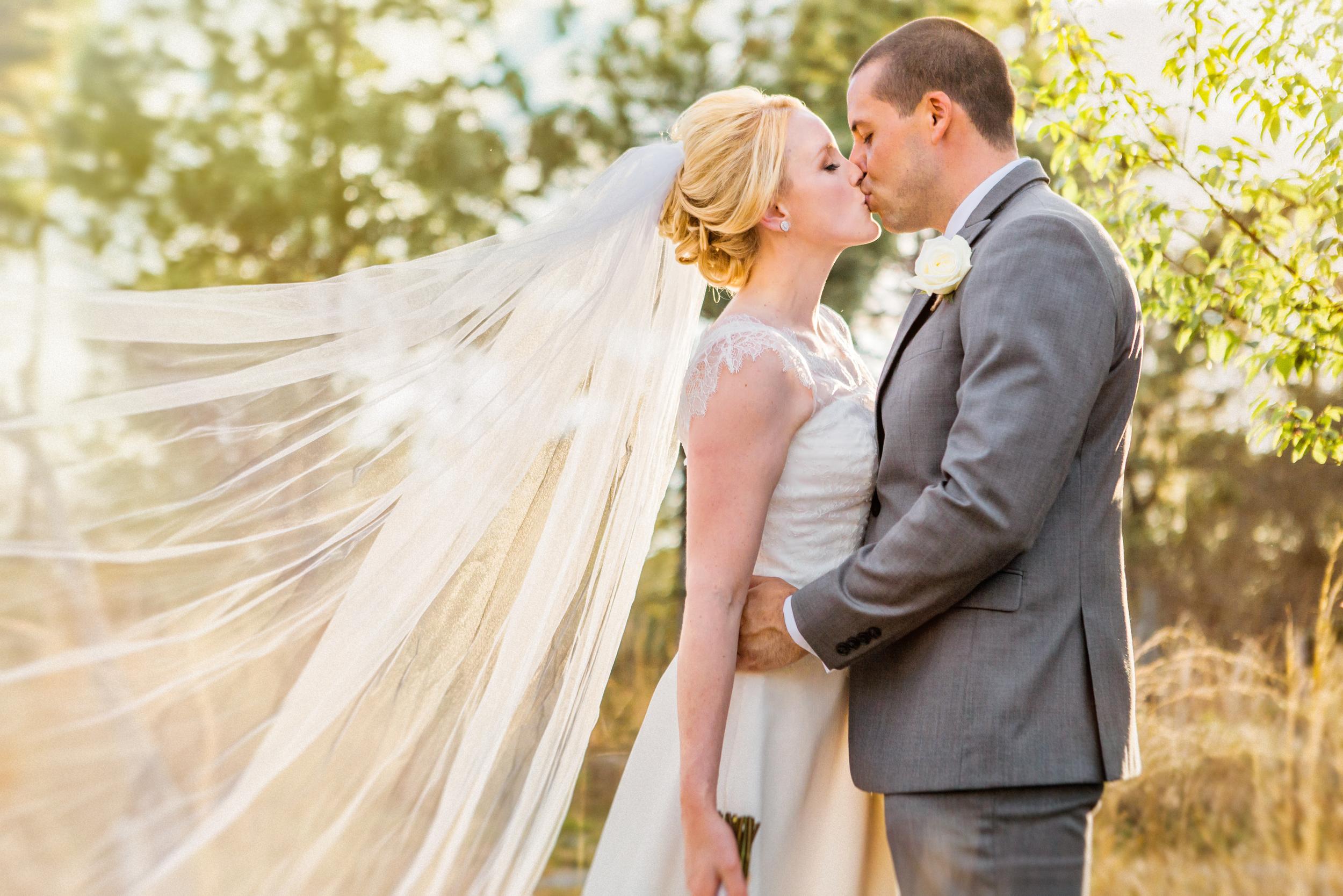 Sean + Claire- Bramble Tree Estate wedding Spring sunset bridals veil by Audrey.jpg