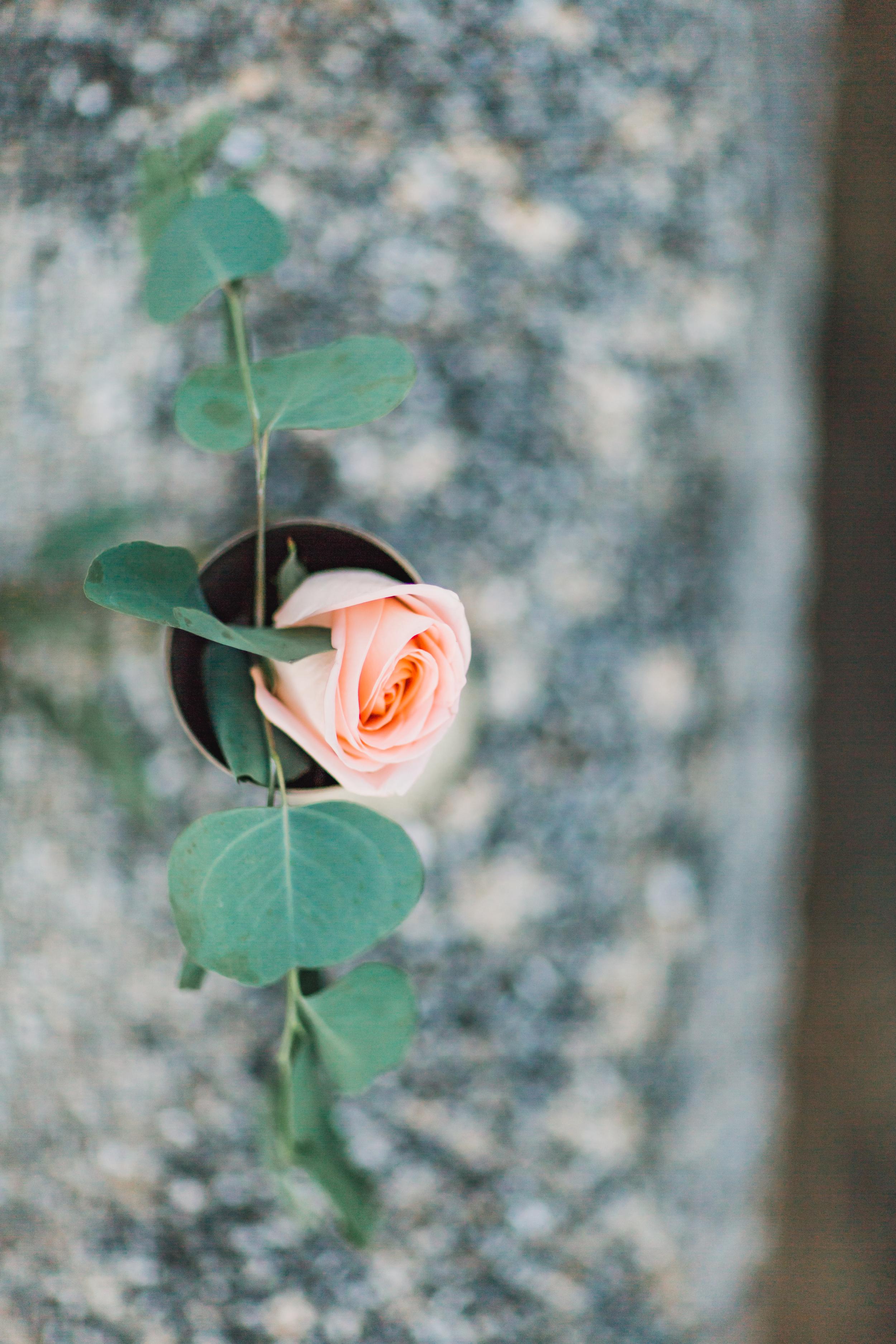 St. Augustine fine art wedding castillo de san marco floral wedding photographer shaina deciryan 108.jpg