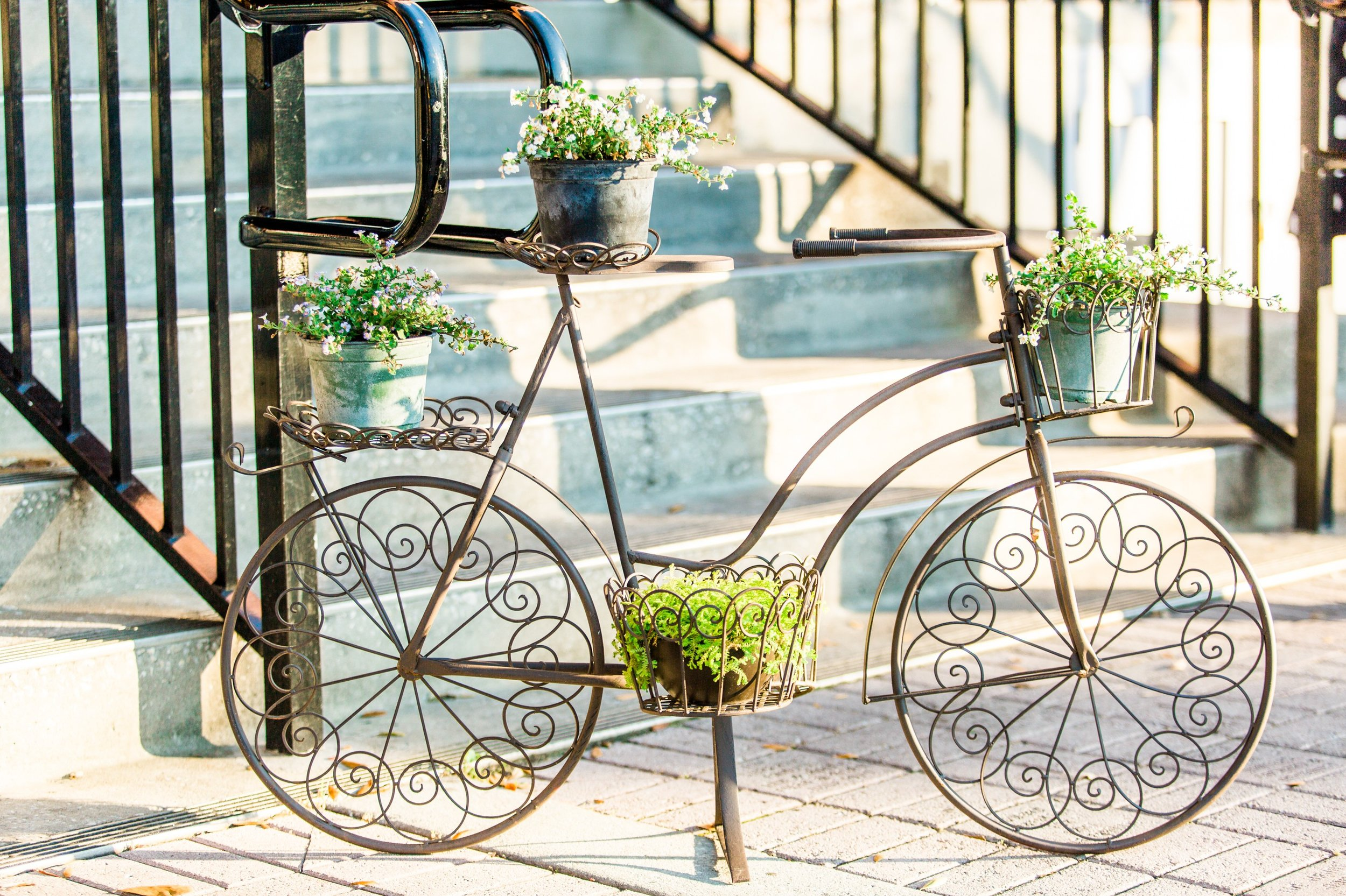 french bicycle inspired wedding at the Winter Park Farmer's Market