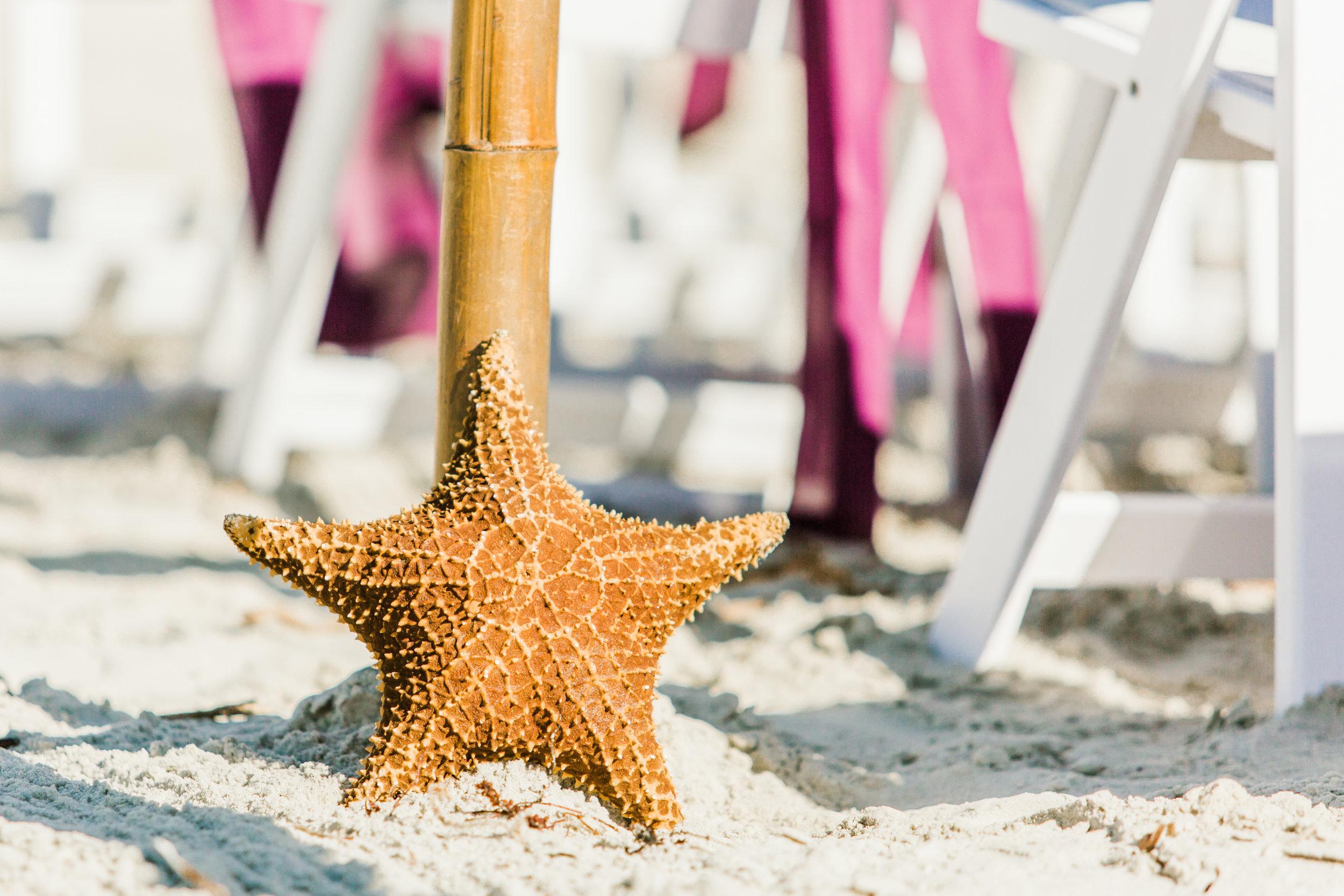 Violets & Seastars- November Ponce Inlet Wedding - Suzette & Dwight 3.jpg
