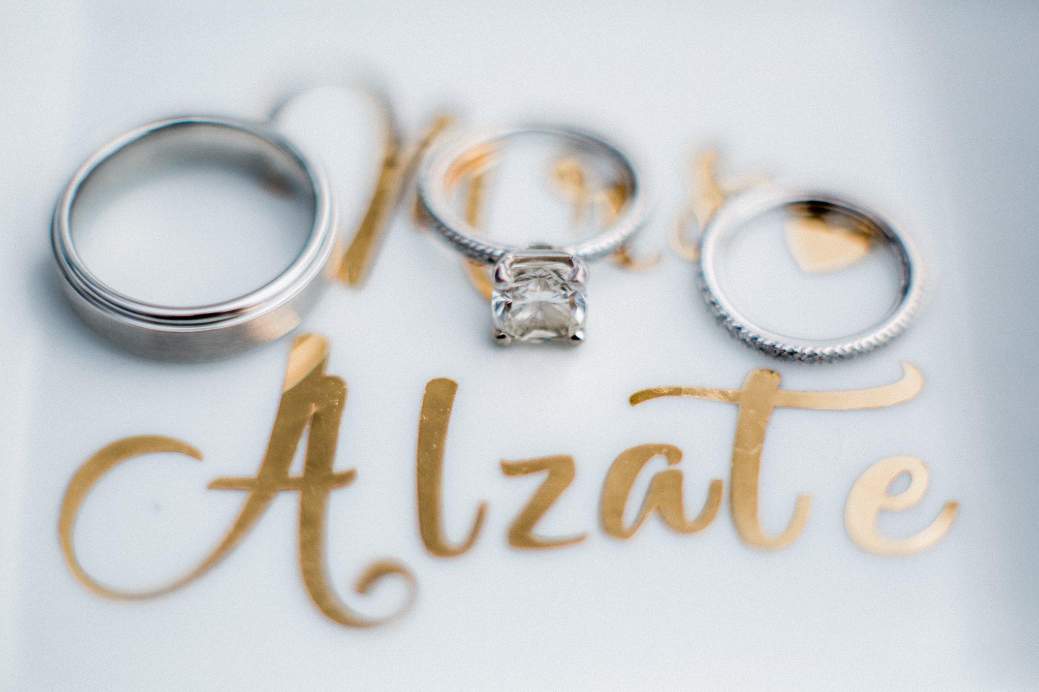 Romantic Secret Garden Navy + Pink Wedding with Harpist- Kraft Azalea Gardens - The Alzates 7.jpg