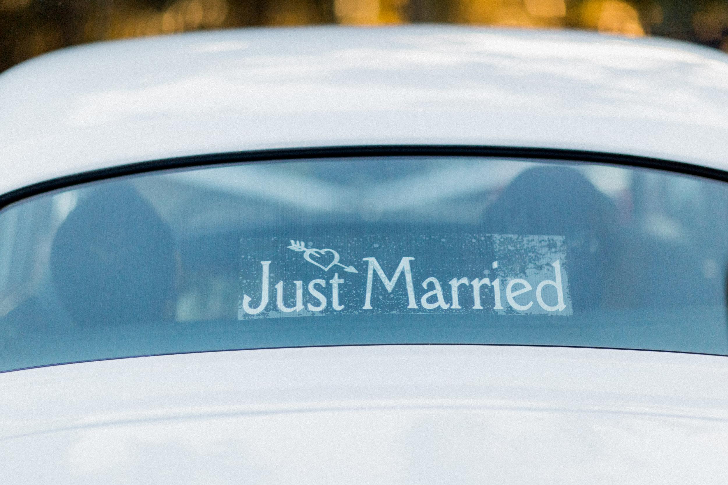 2. Details - Kraft Azalea Garden Wedding of Alexandra + Anthony 101.jpg
