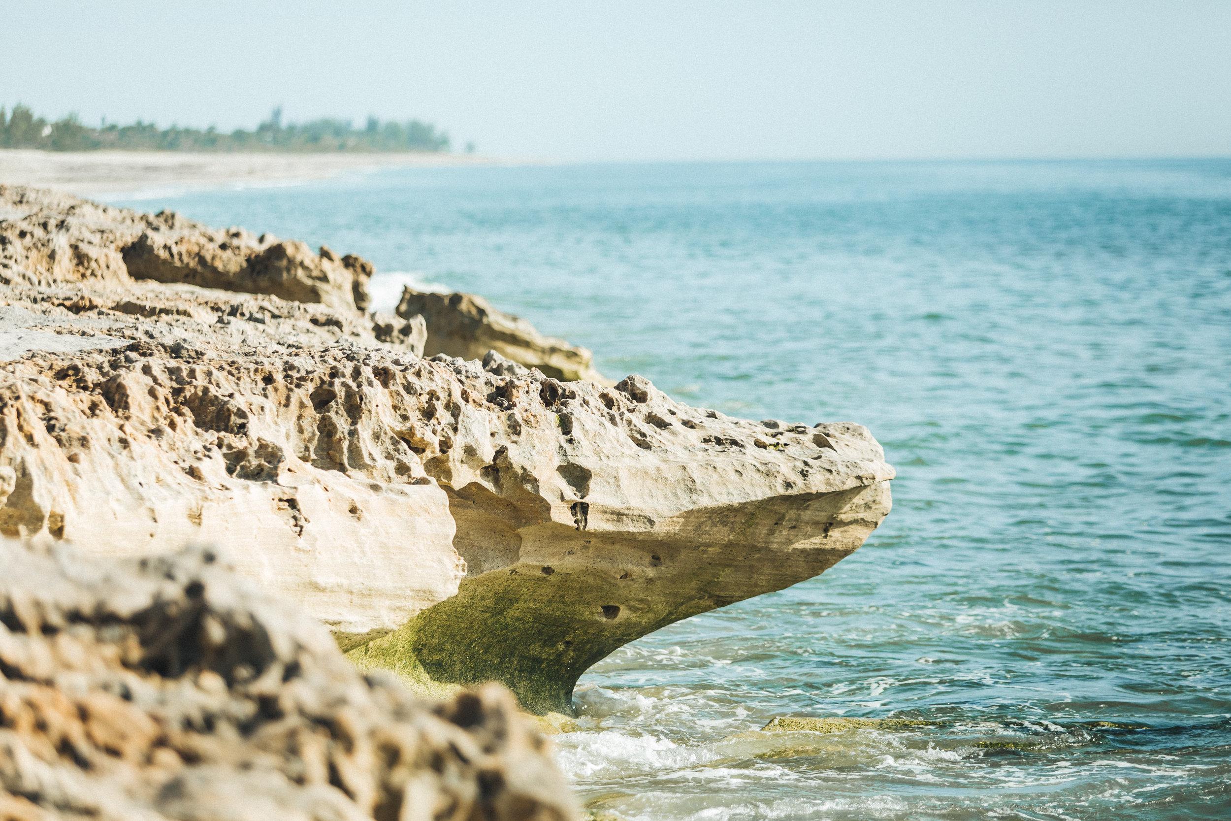 Blowing Rock Preserve- Florida Nature Photos-17.jpg