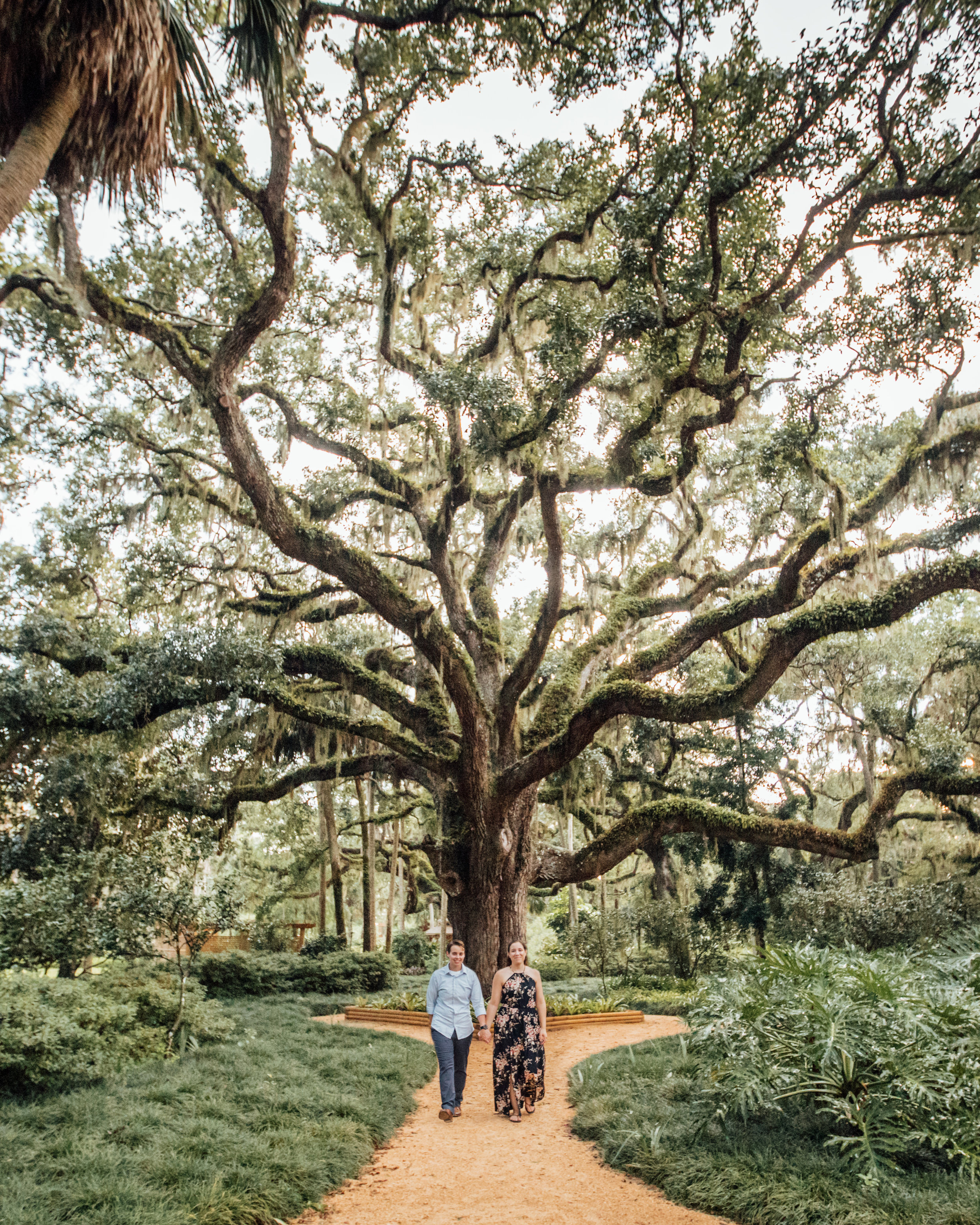 Central Florida engagement photos- Washington Oaks State Park- Kayla + Kelly-162-crop.jpg