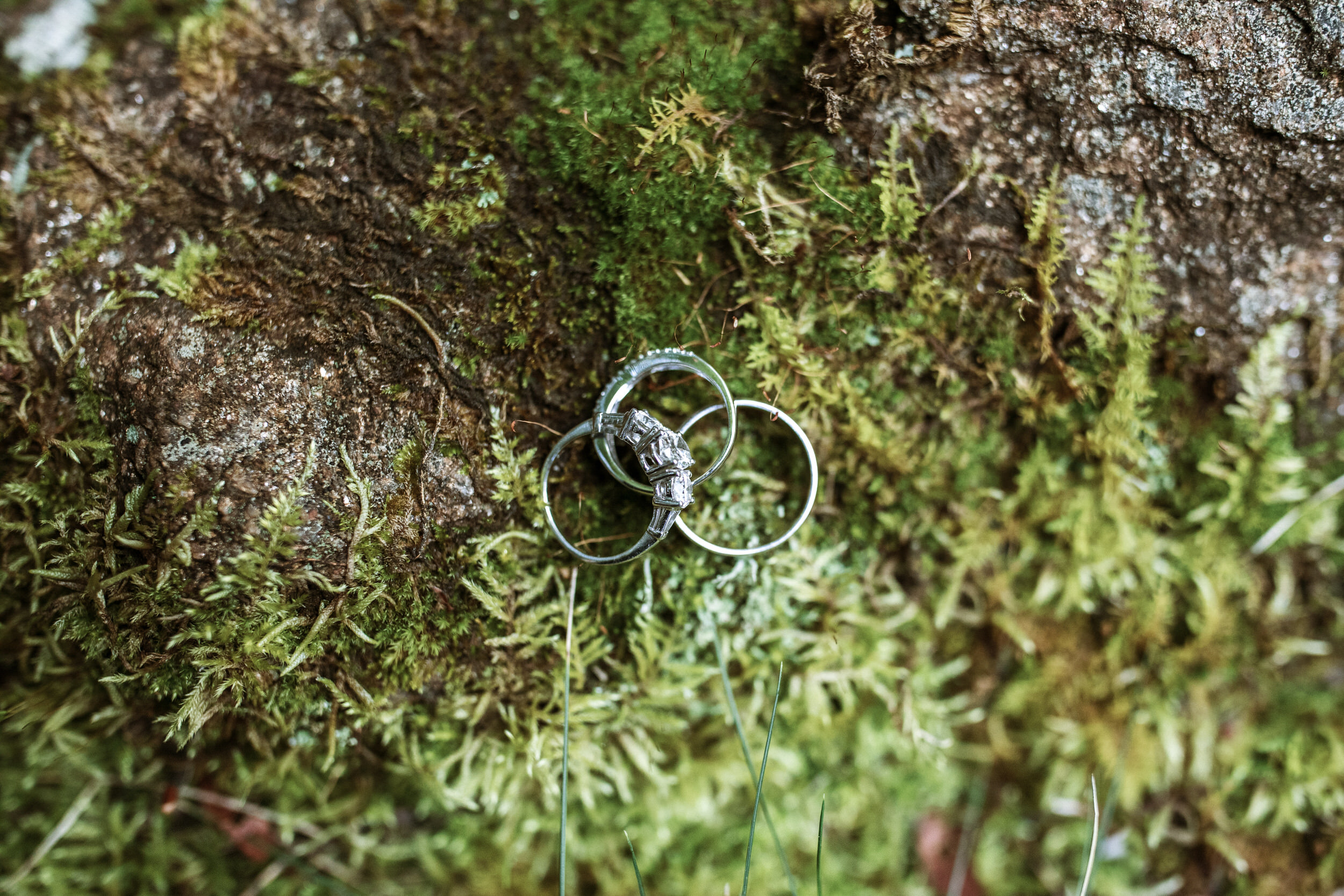 2. Groom's Morning - Cole + Rachel's Great Smoky Mountain National Park Elopement-41.jpg