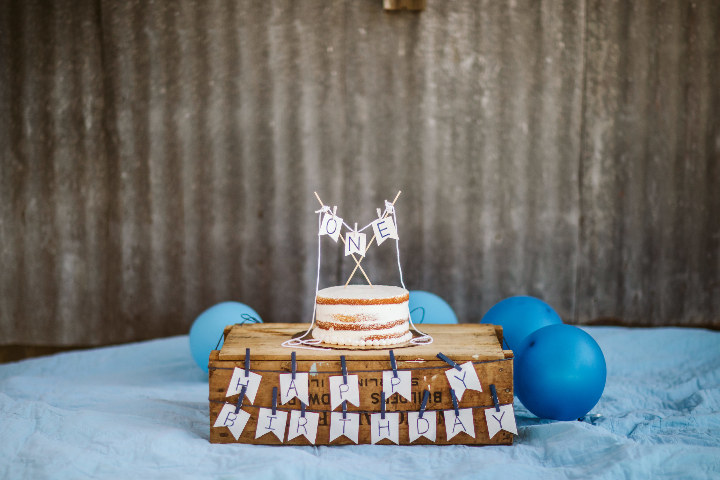 2. Hudson's One Year Birthday Cake Smash- Horse Ranch- February 2019-24.jpg