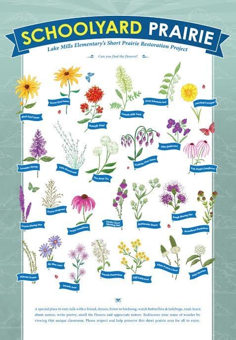 WildflowersPoster